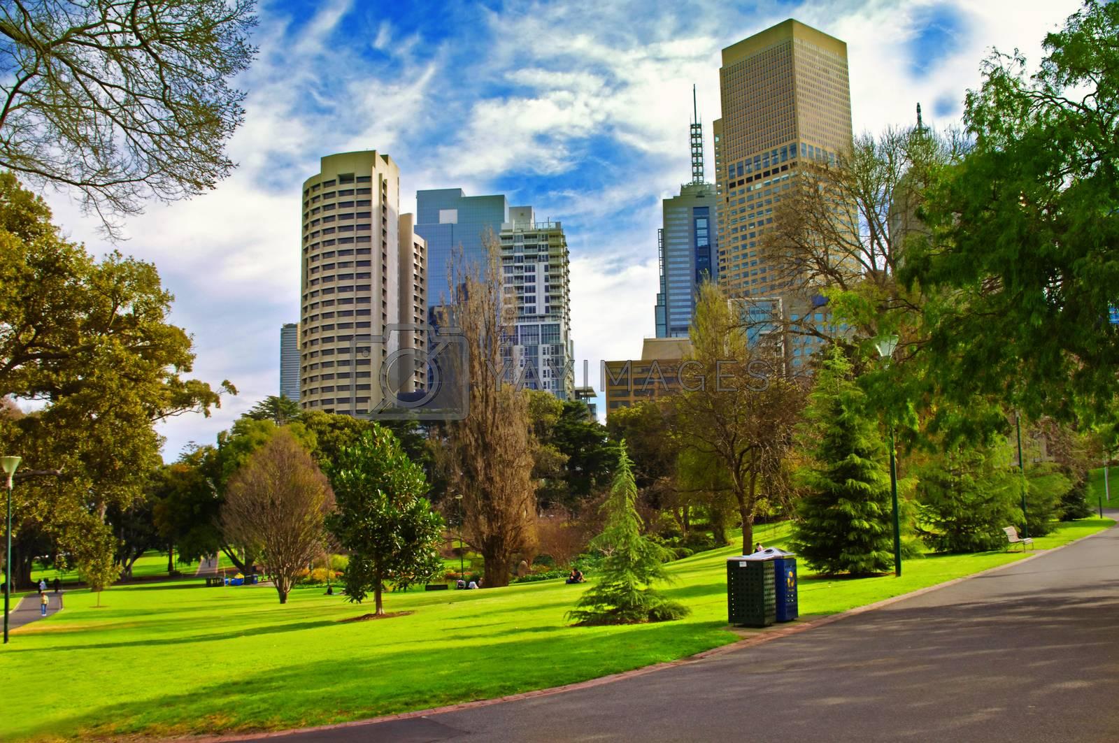 city park in sunny day.Melbourne Australia