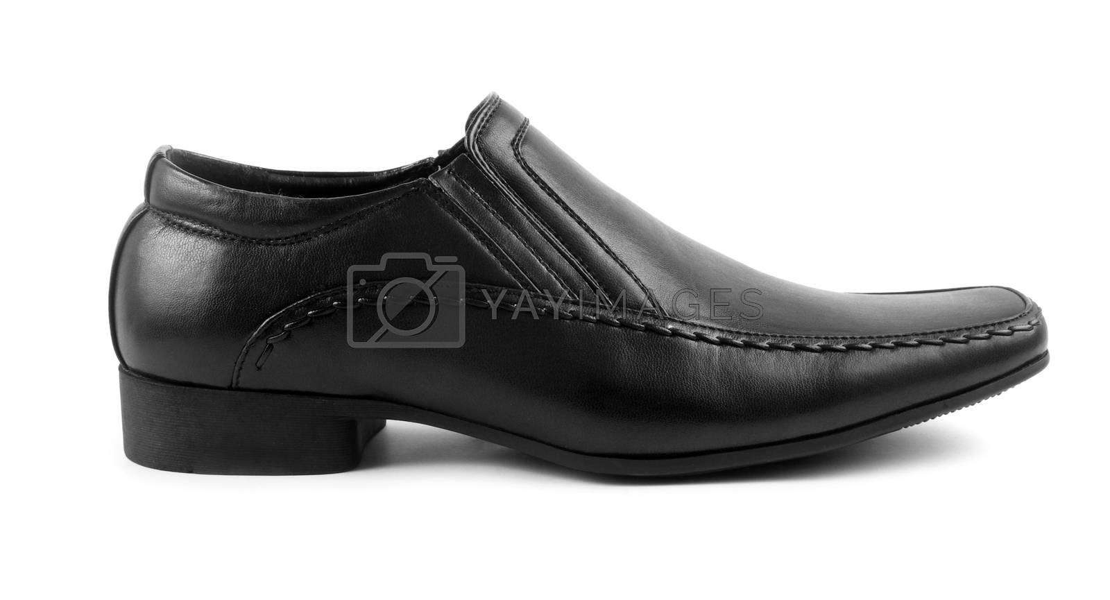 male black elegant shoe on white