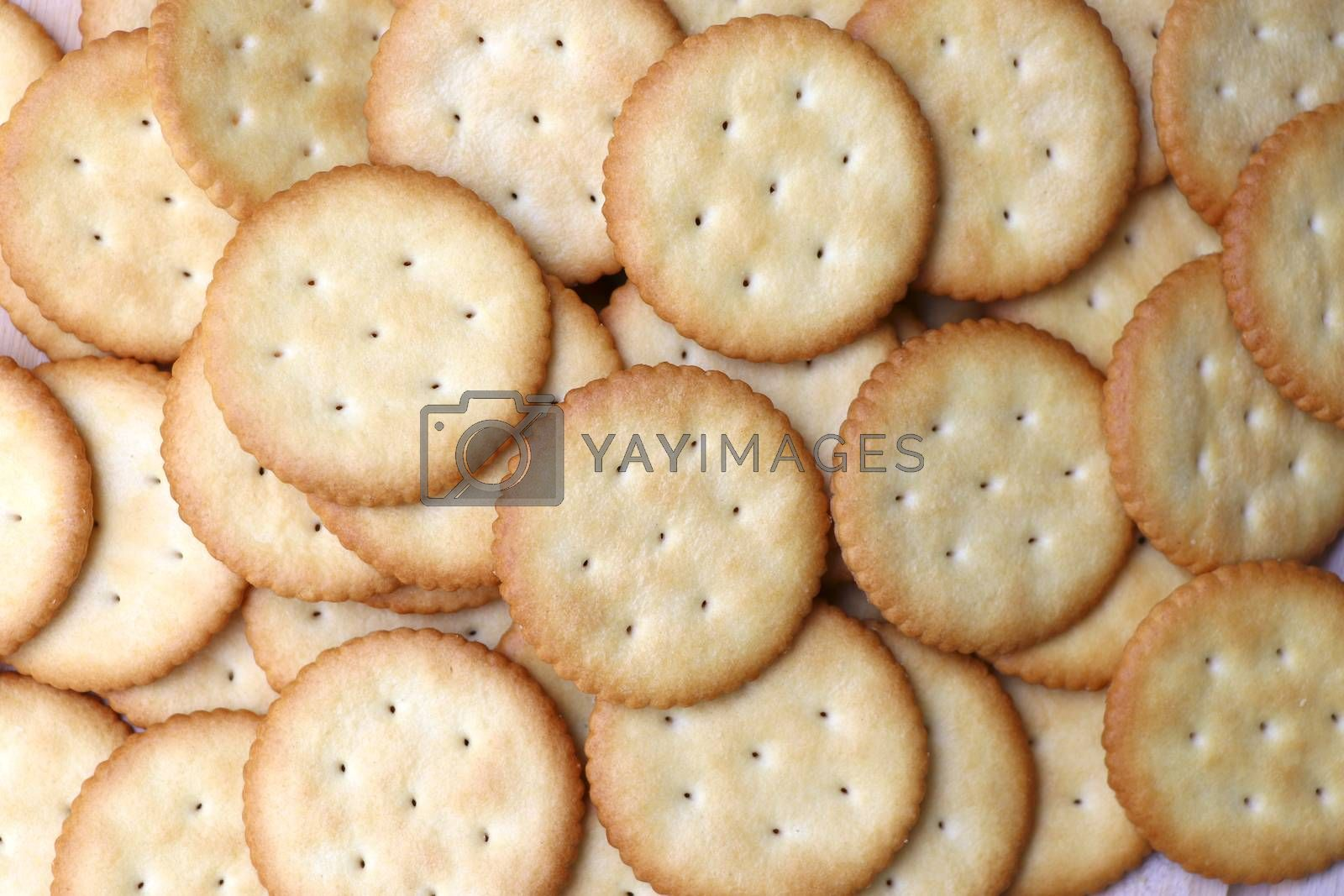 Biscuits cracker background. Crackers lay on the table.
