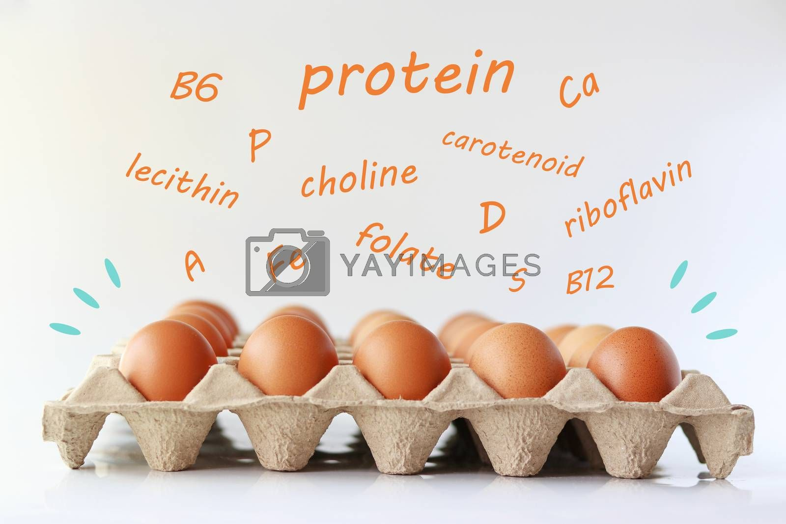 Eggs on the carton tray with the nutrients letters are floating on top.
