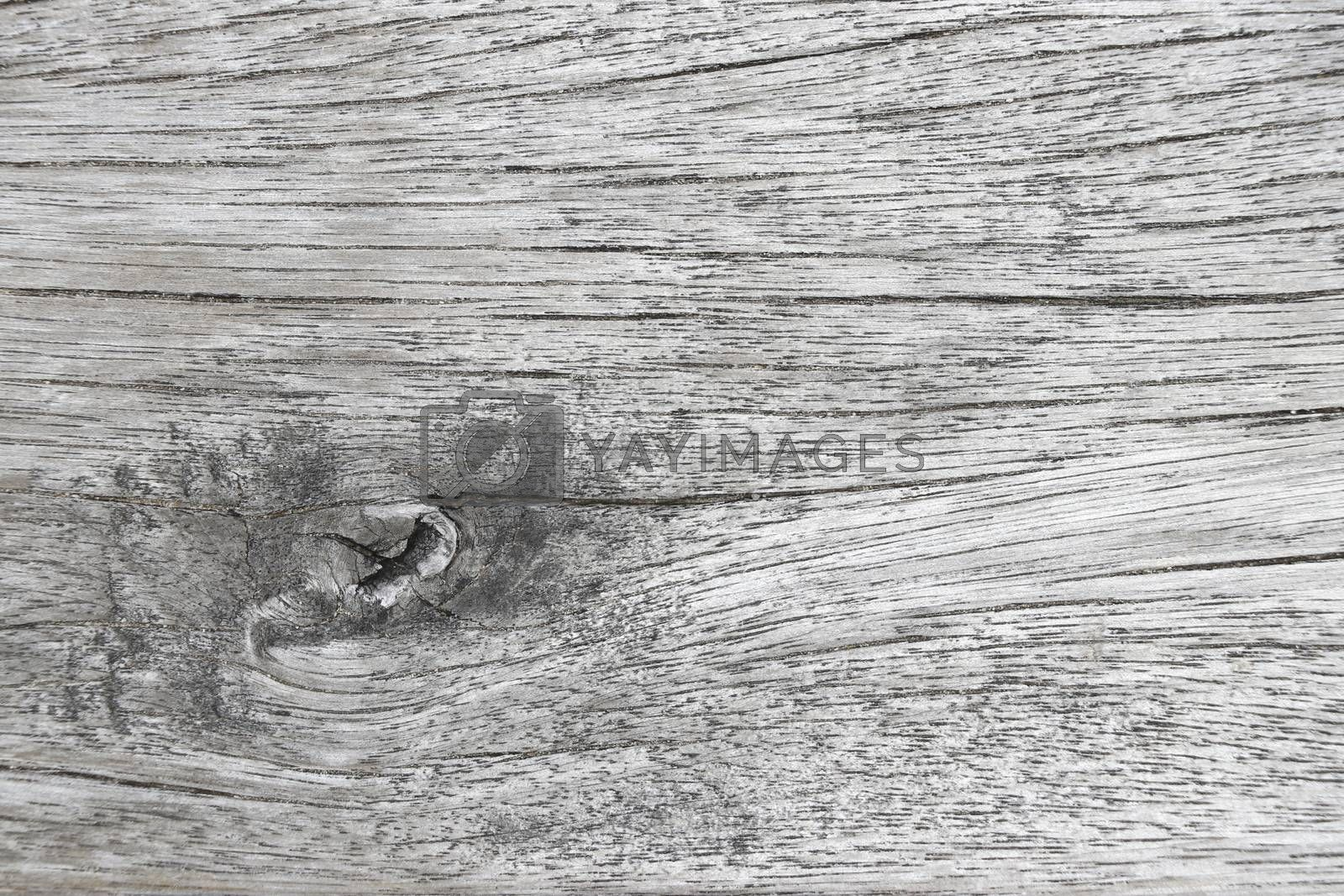 Old wood background. Old wood pattern background.