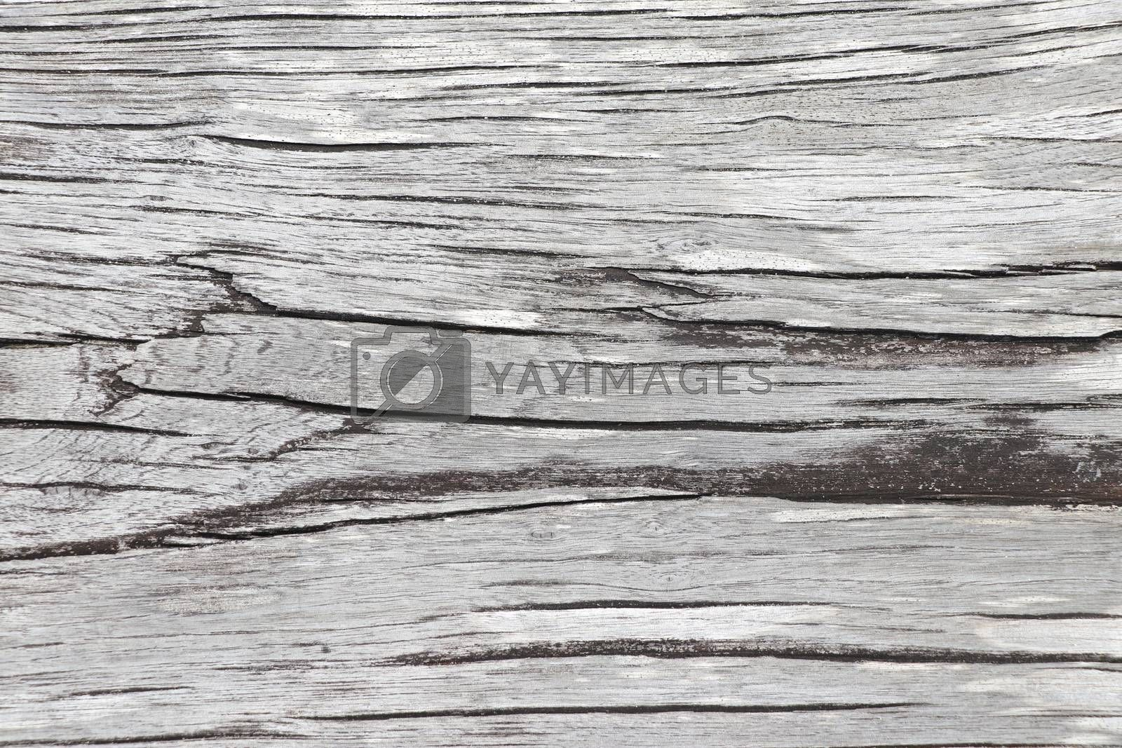 Old wood background. Old wood surface background.