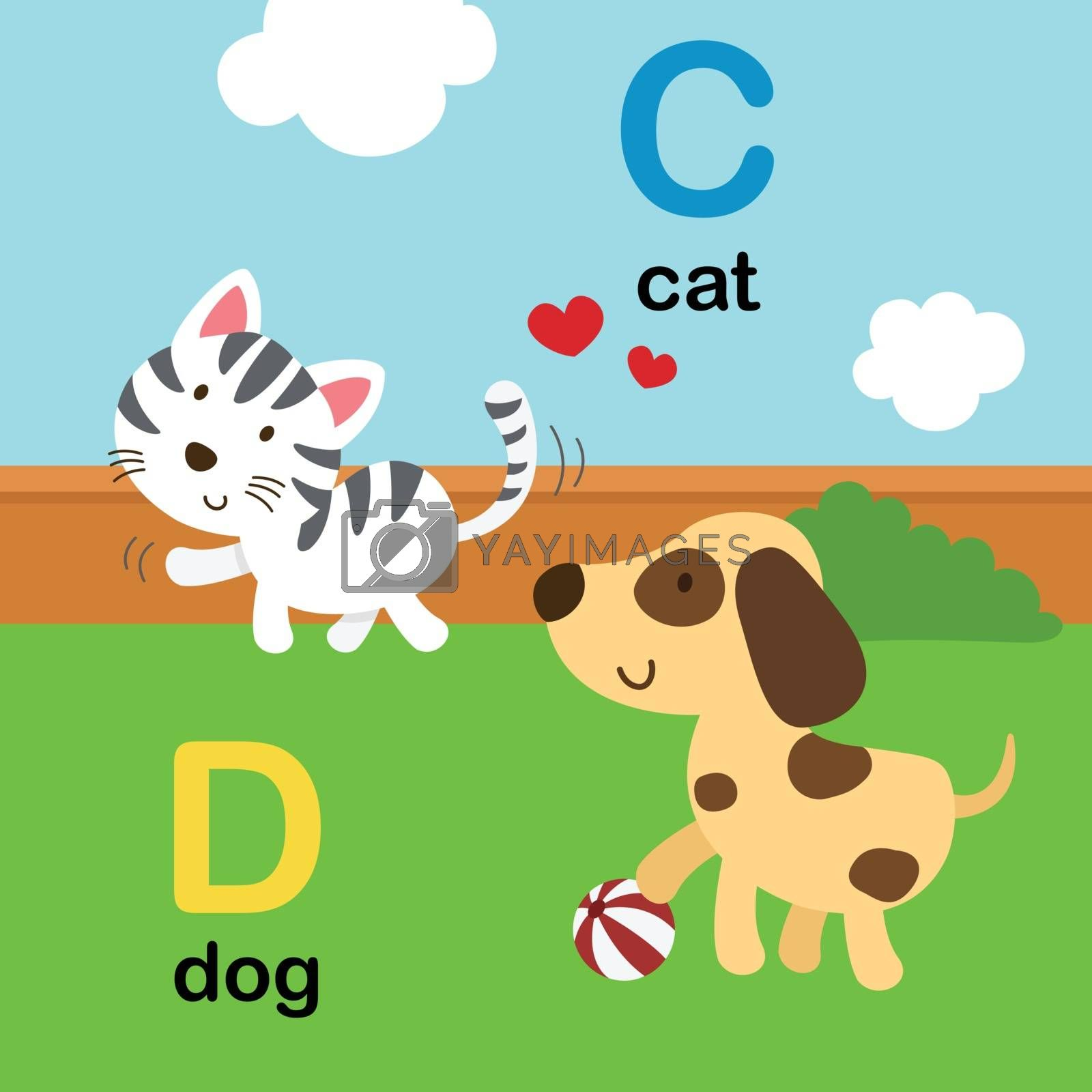 Alphabet Letter C-cat,D-dog,vector illustration