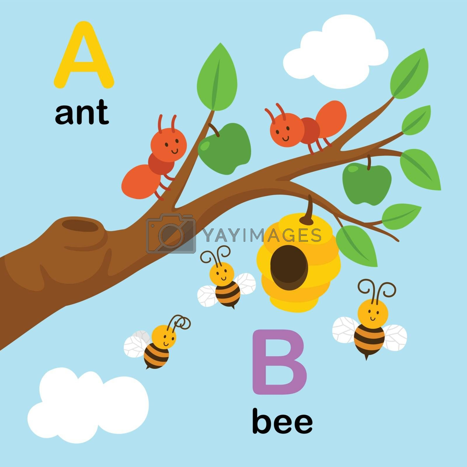 Alphabet Letter A-ant,B-bee,vector illustration