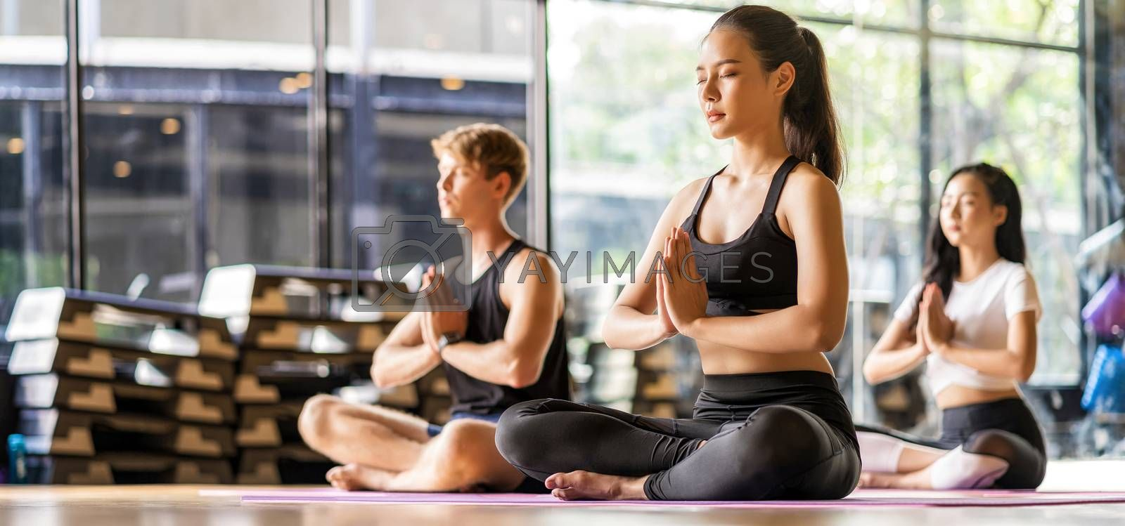 Banner Group of diversity practicing yoga class, healthy or Meditation Exercise,stretching in upward facing dog exercise, wearing sportswear bra and pants, sports and healthcare concept,