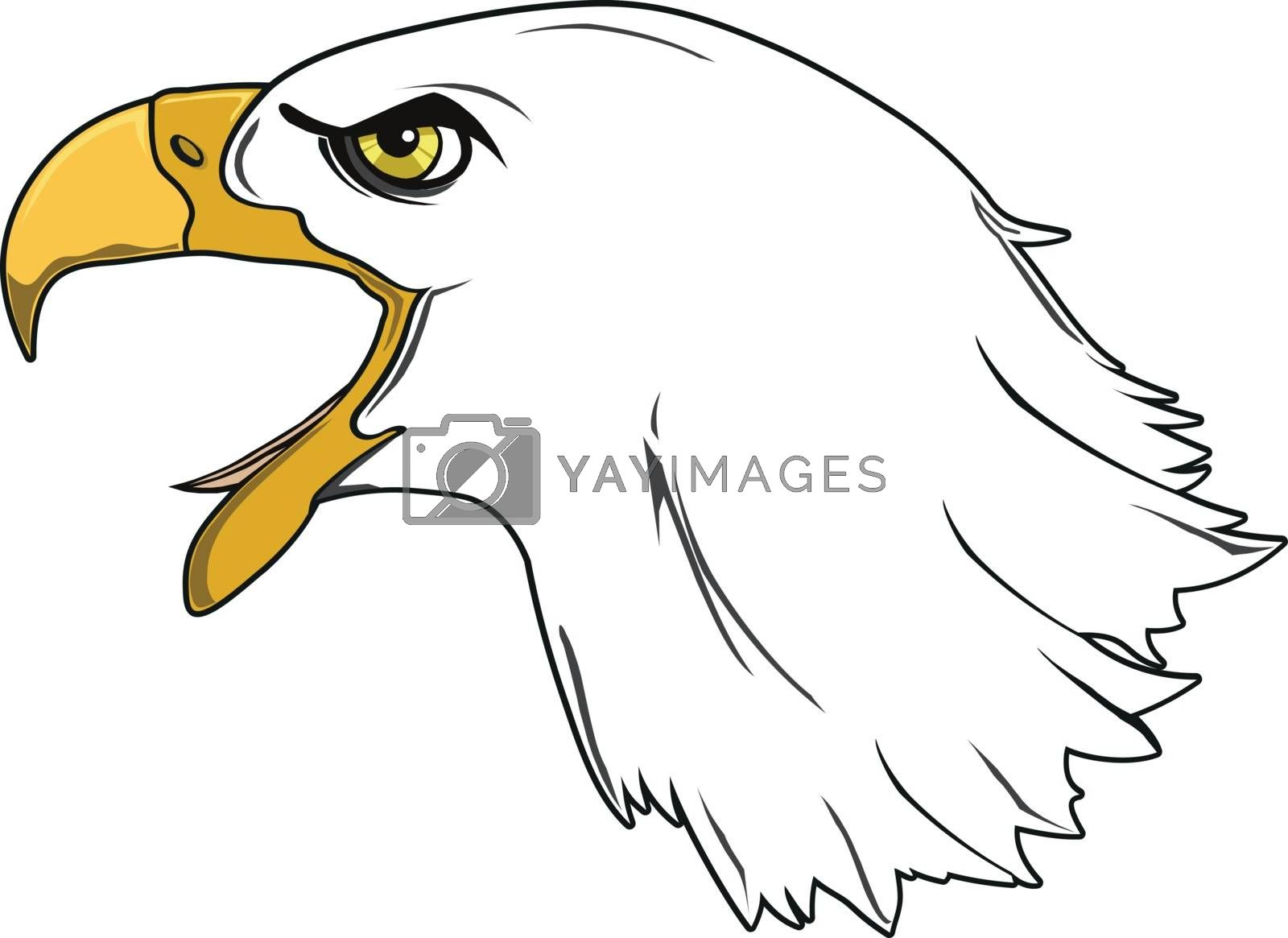 ROYAL EAGLE by samandale