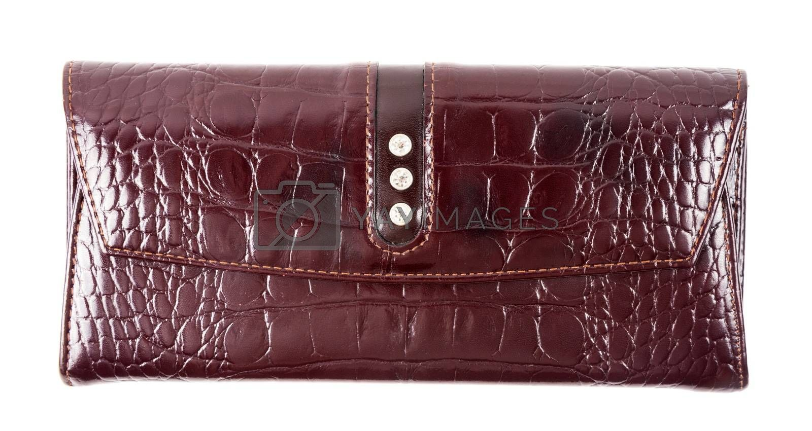 Closeup of the fashion wallet on white