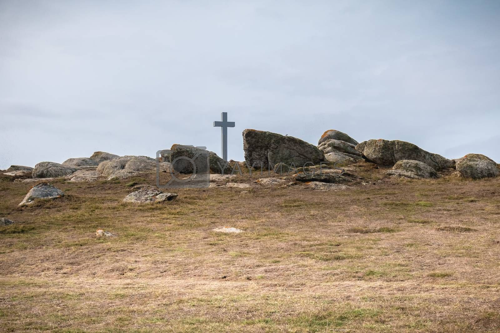 view of the wild vegetation of the cross of the tip of Chatelet on the island of Yeu, France in summer
