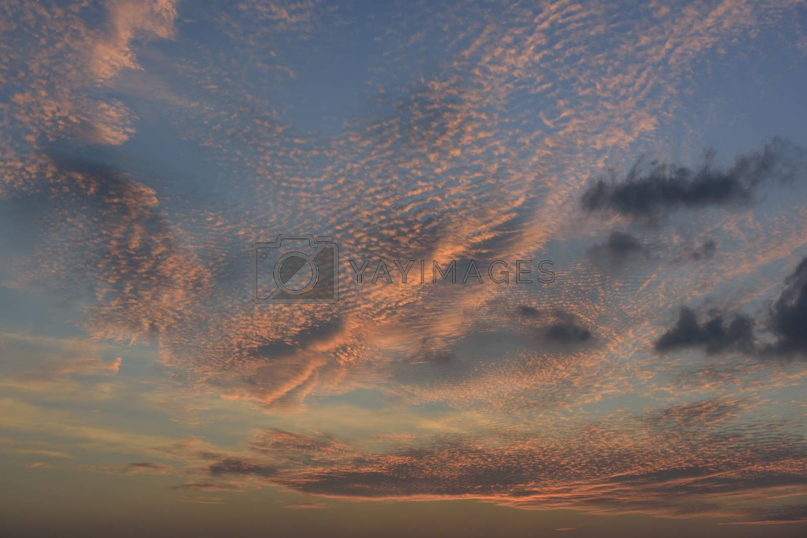 Blue sky and orange cloud back ground at twilight