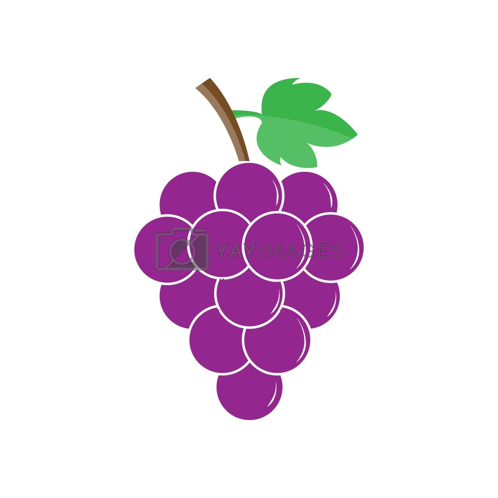 Bunch of grapes, color image, simple flat design