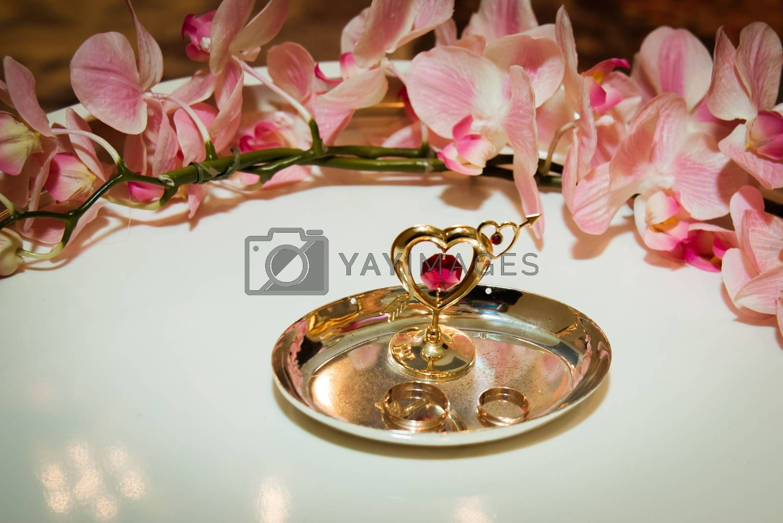 Two beautiful gold wedding rings lie on plates decorated with hearts and pink orchids