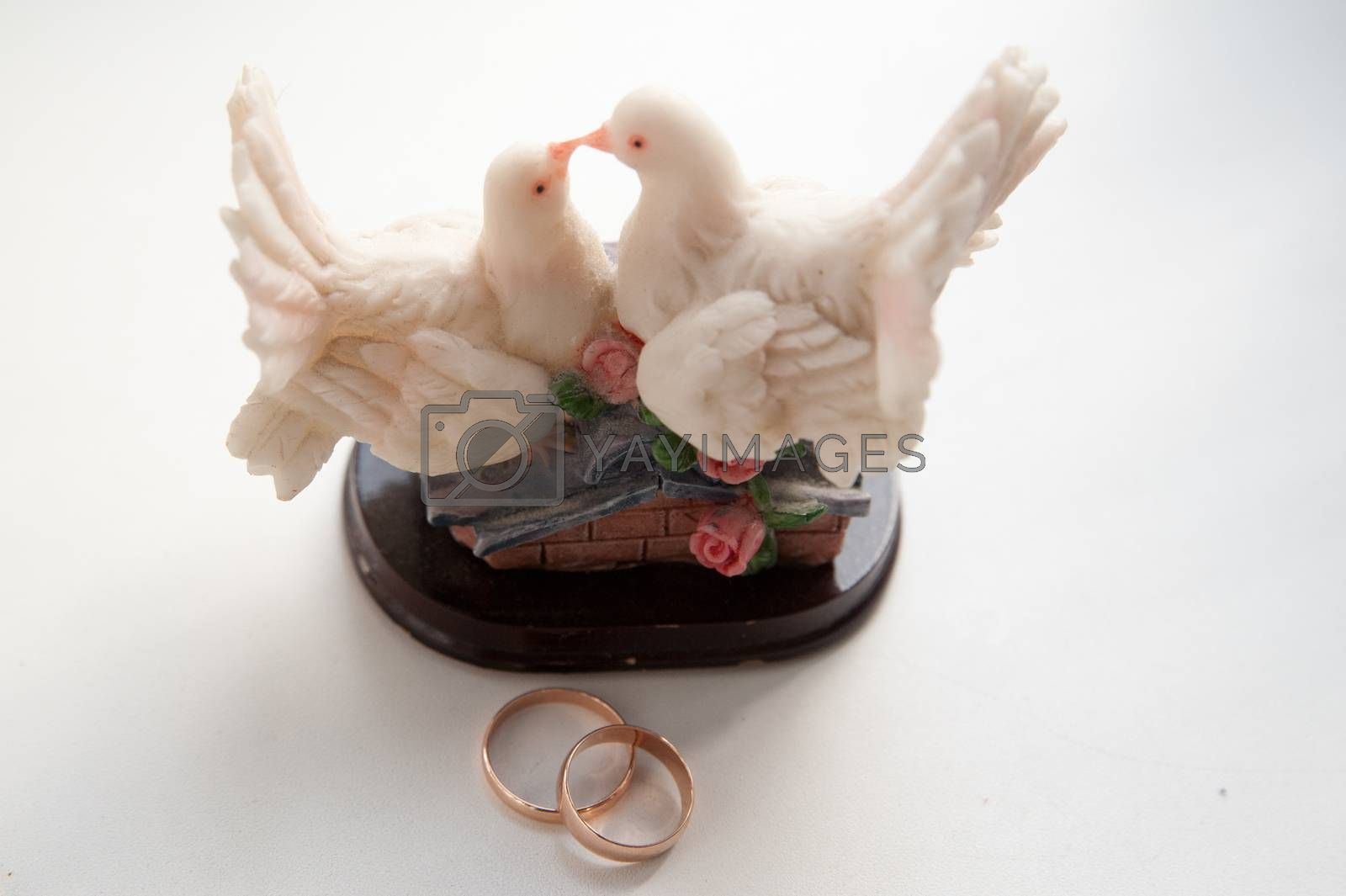 Two beautiful wedding rings and a statue of white doves on the wedding day