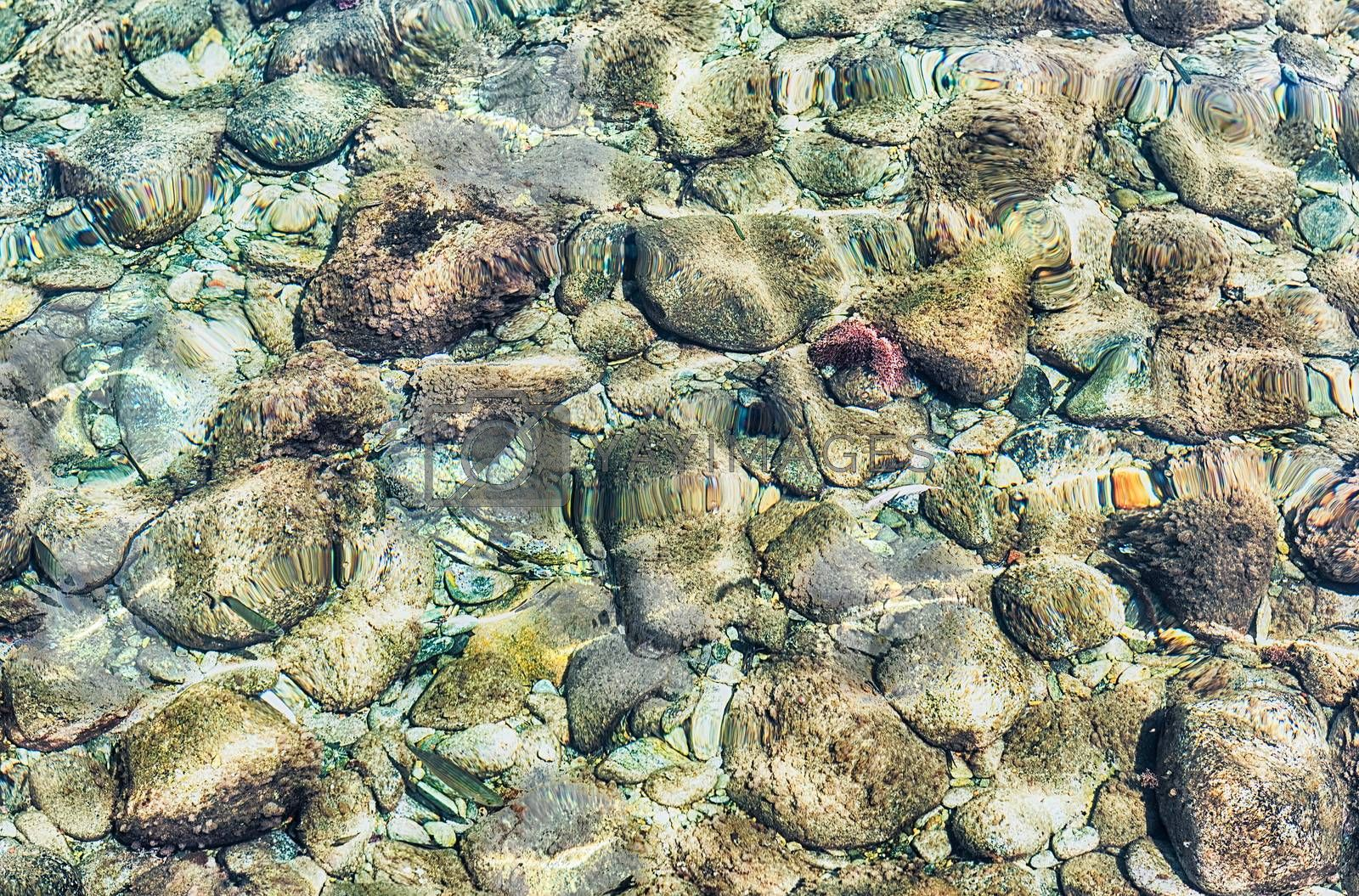 Underwater pebbles at the seaside. May be used as background