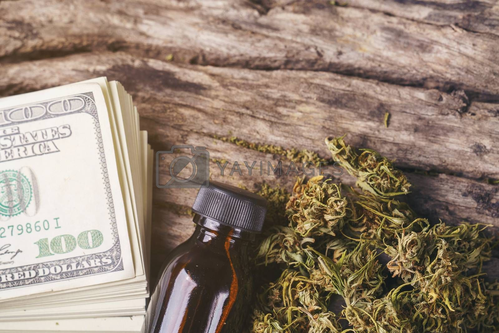 dried medical marijuana with CBD  THC extract and dollar banknote