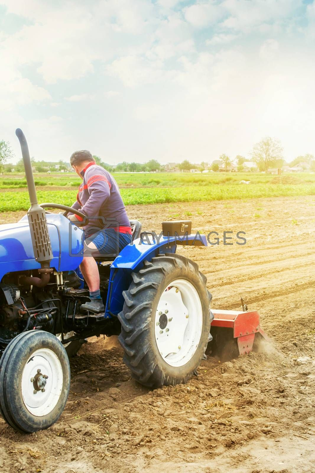 A farmer on a tractor cultivates a farm field. Soil milling, crumbling and mixing. Agriculture, growing organic food vegetables. Loosening the surface, cultivating the land for further planting.
