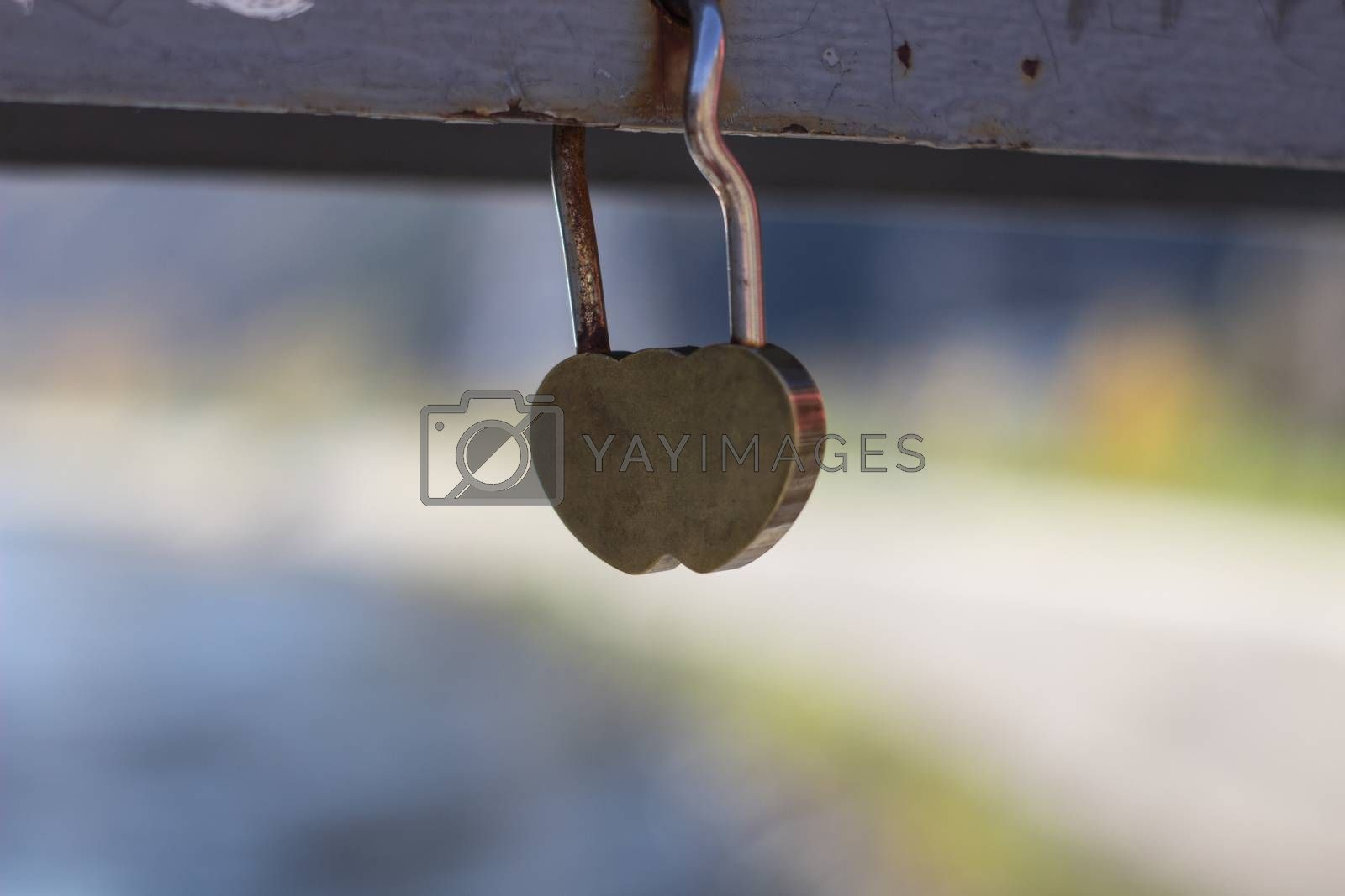 A gold padlock in a heart form hanging on a steel rope of the bridge railing on the background of a river and another bridge. Photo 3