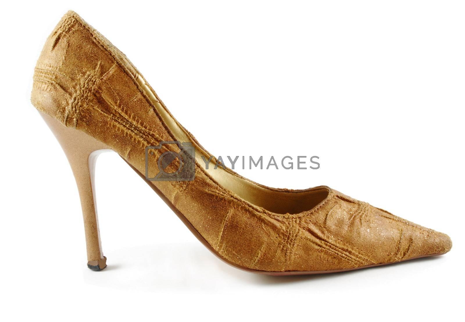 brown elegant lady shoe