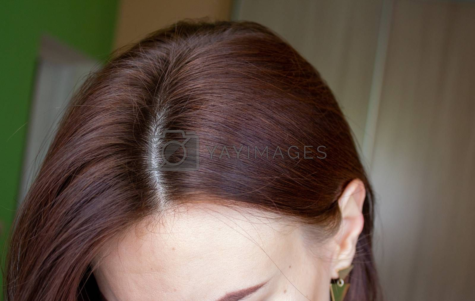 hair on a woman's head close-up. Hair brown color of