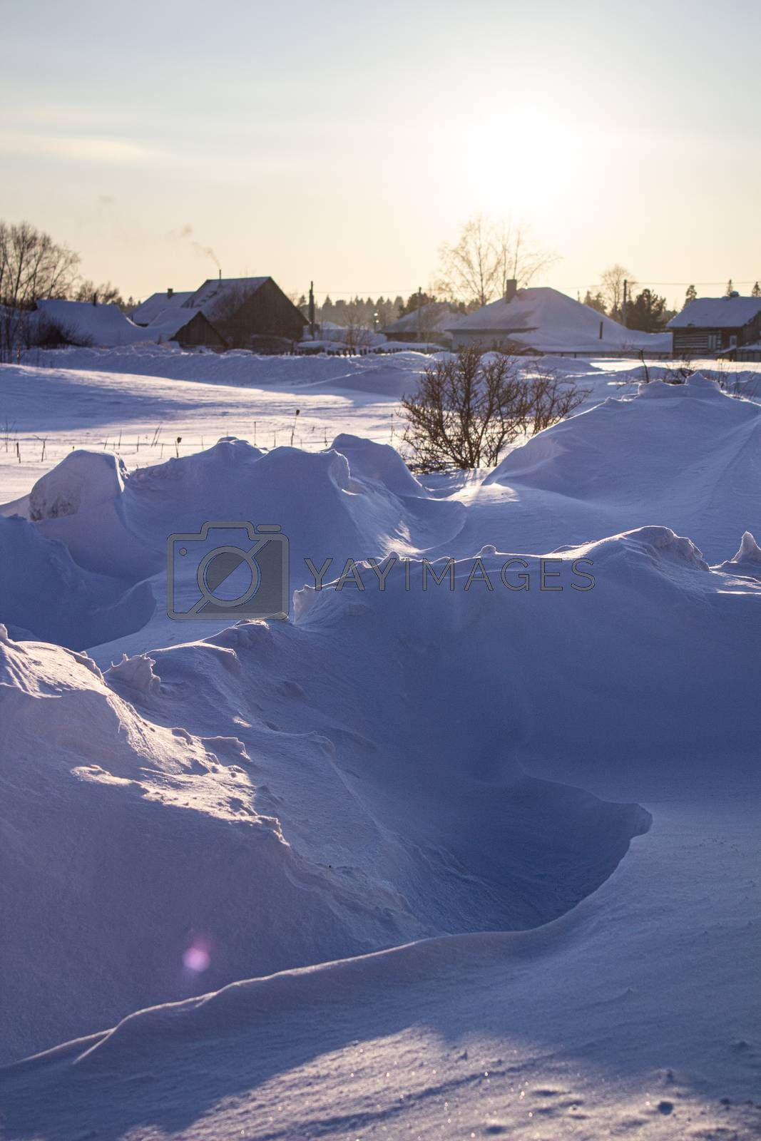 Snow drifts in winter. Winter kind. The snow at sunset. Much snow.