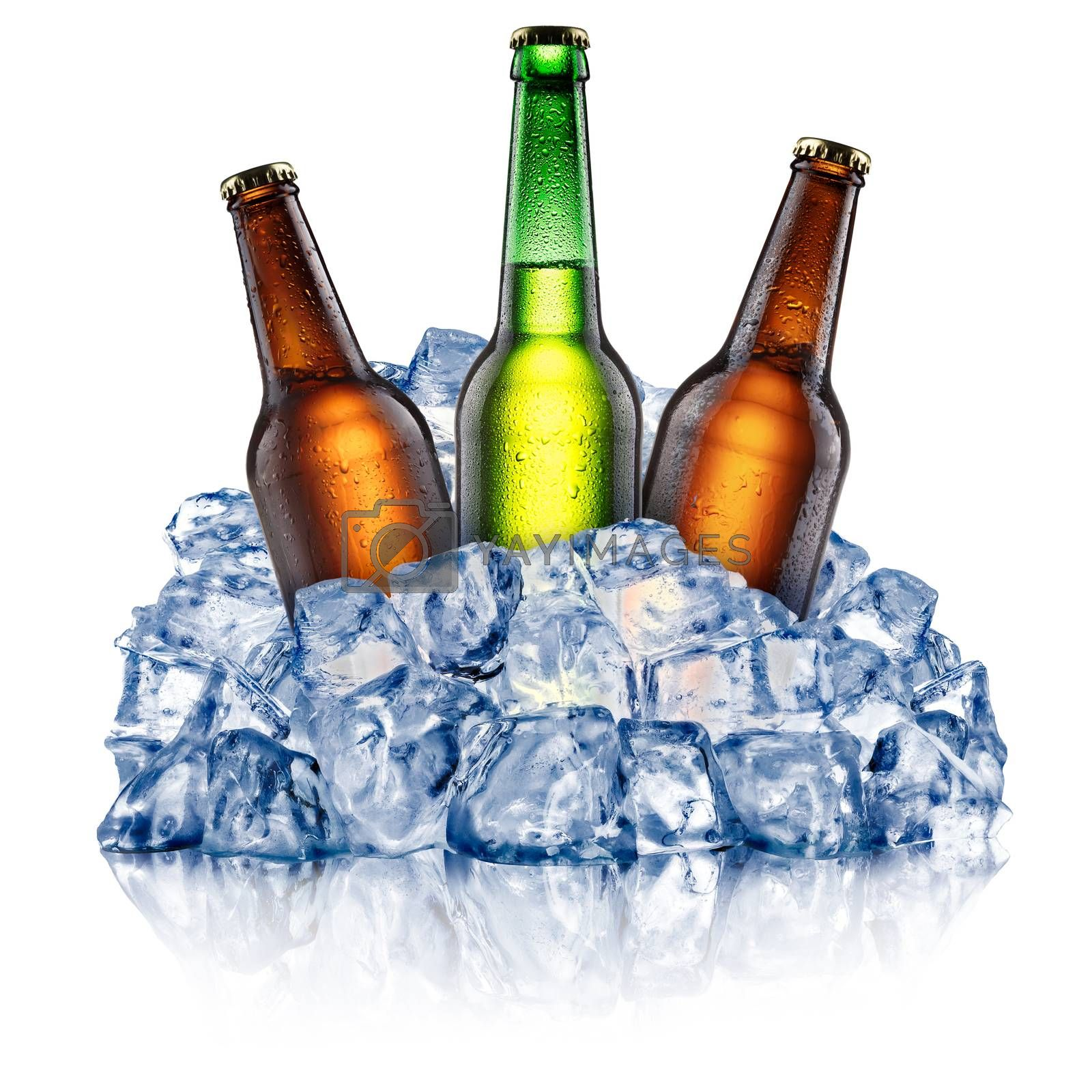 Green and brown beer bottles, cooling down in a rough crushed ice. Clipping paths