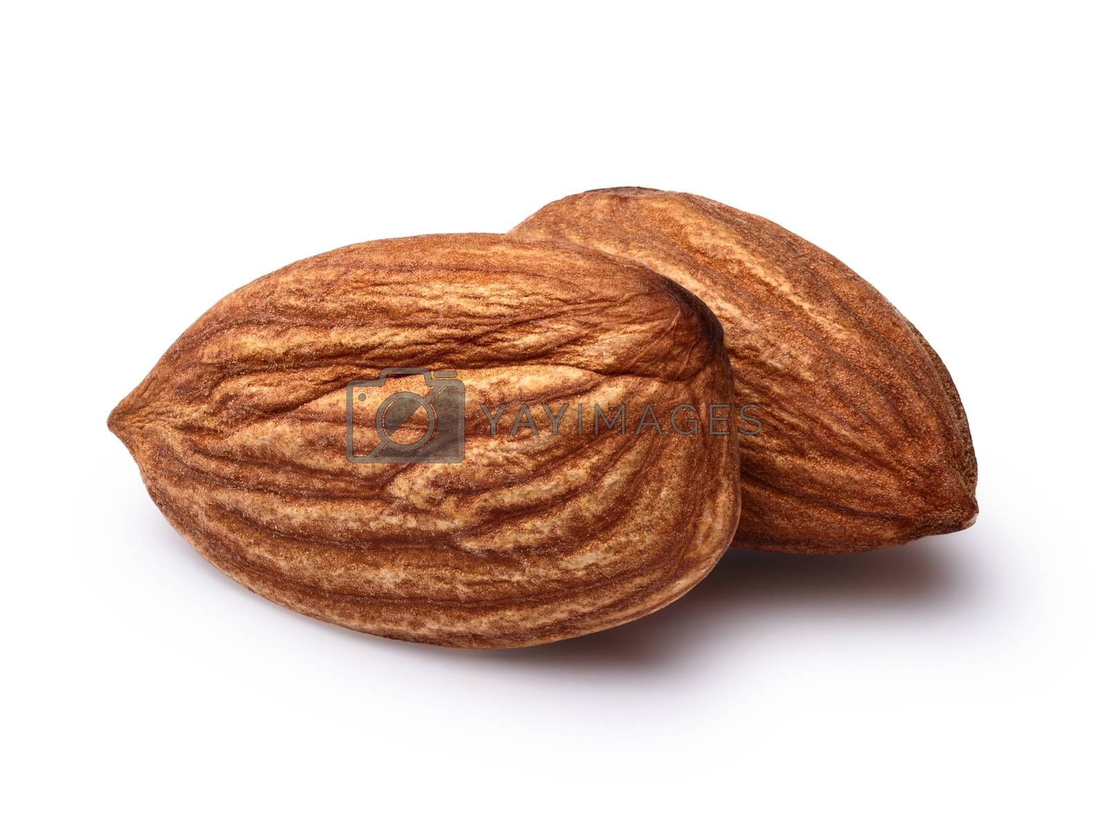 Two almonds without shell. Infinite depth of field,clipping paths