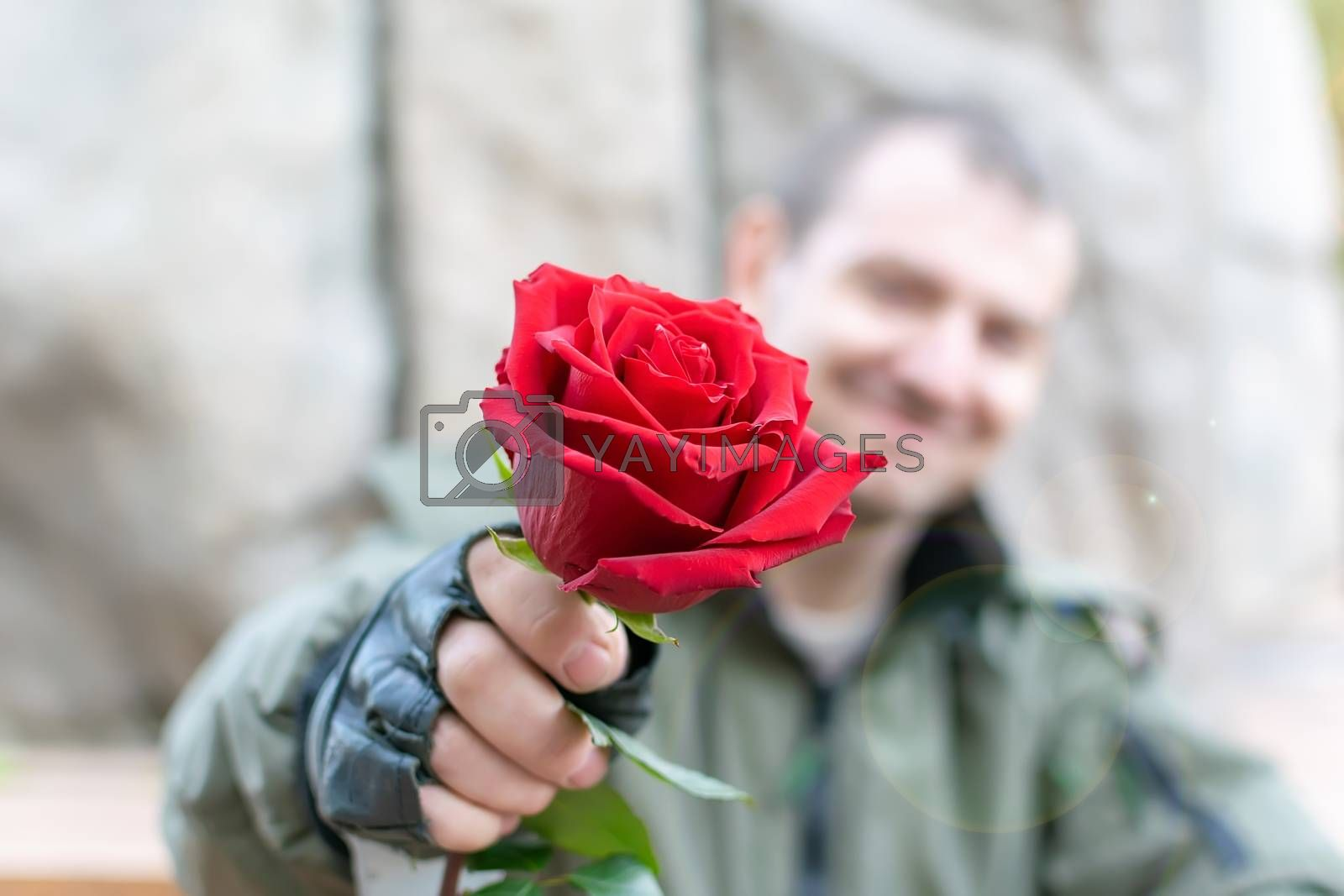 hand of a man in leather gloves and handcuffs gives a red rose flower