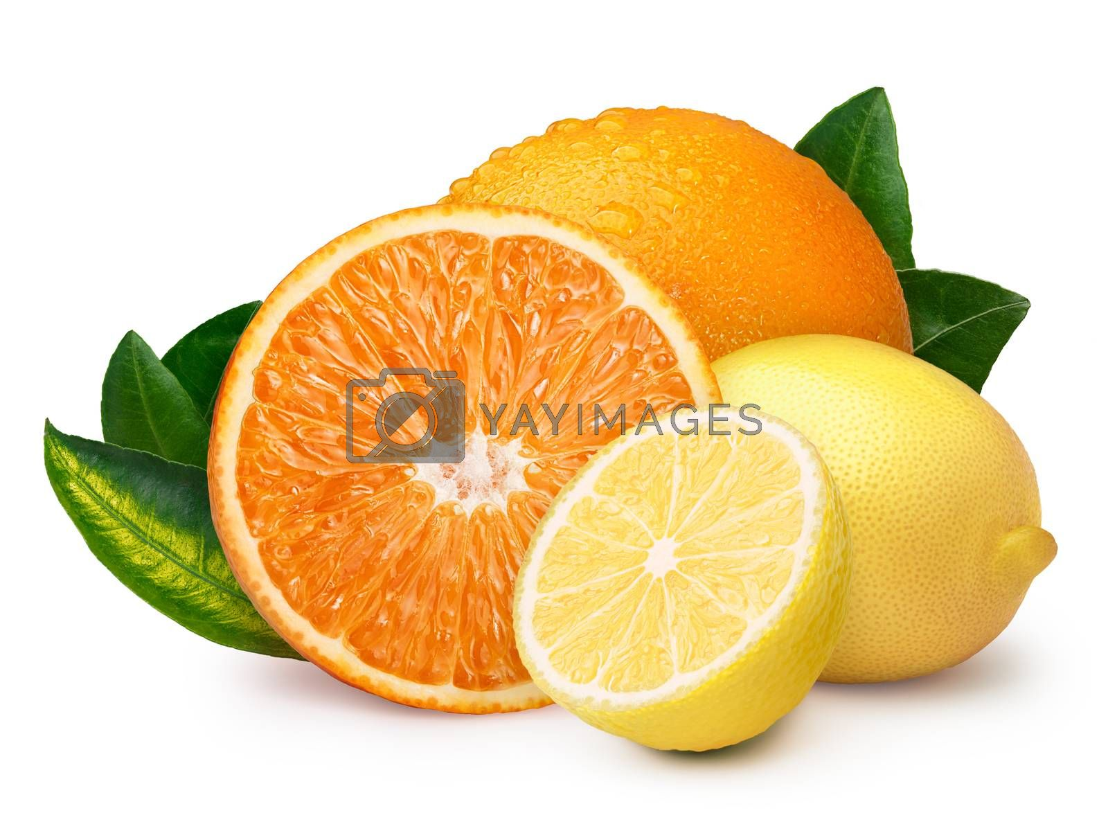Whole and halved lemon with orange. Clipping paths, infinite depth of field. Citrus fruits