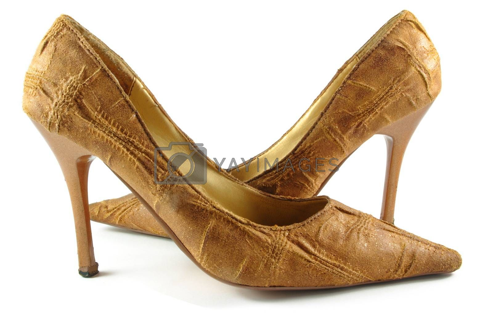 brown elegant lady shoes