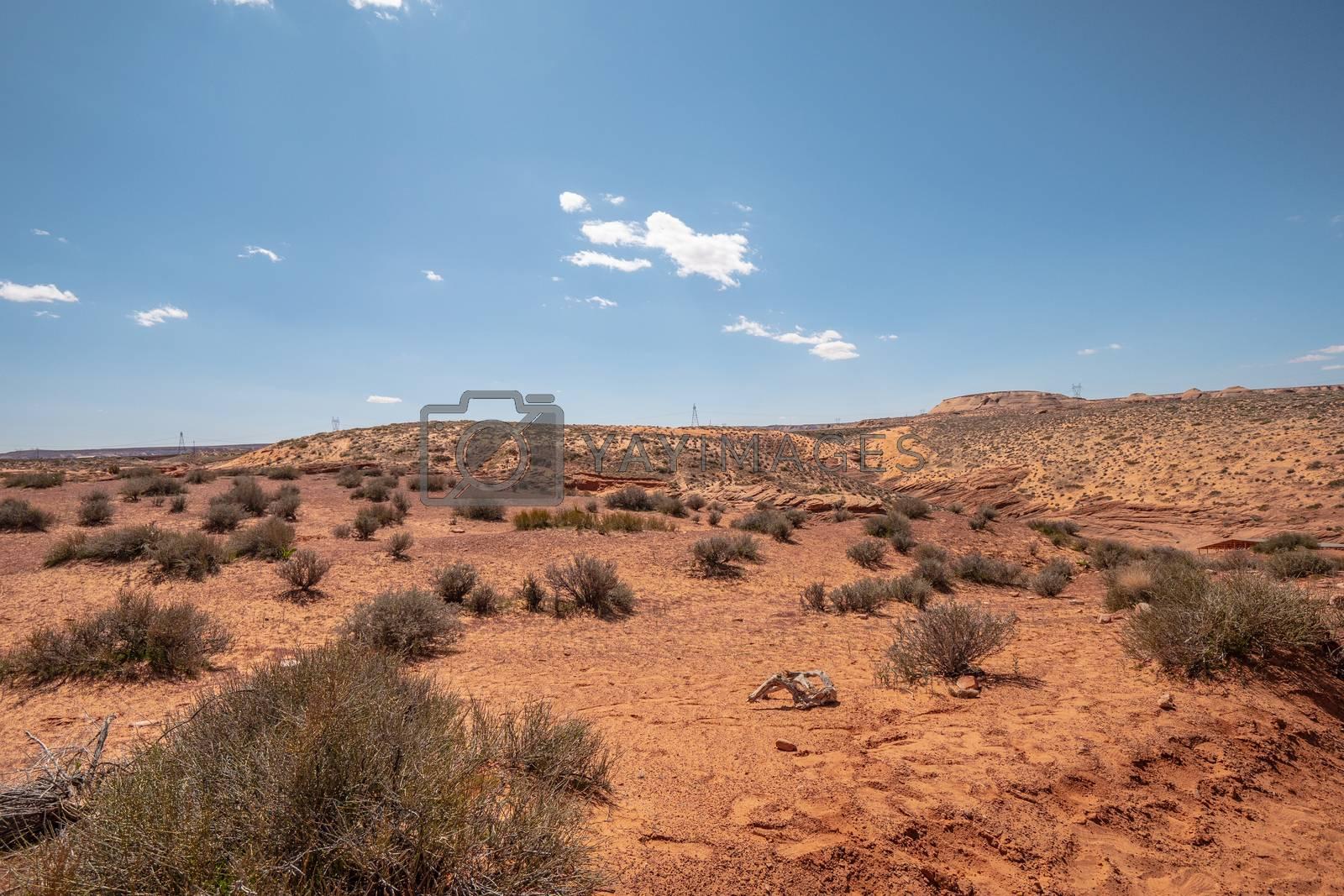 The desert of Utah - travel photography