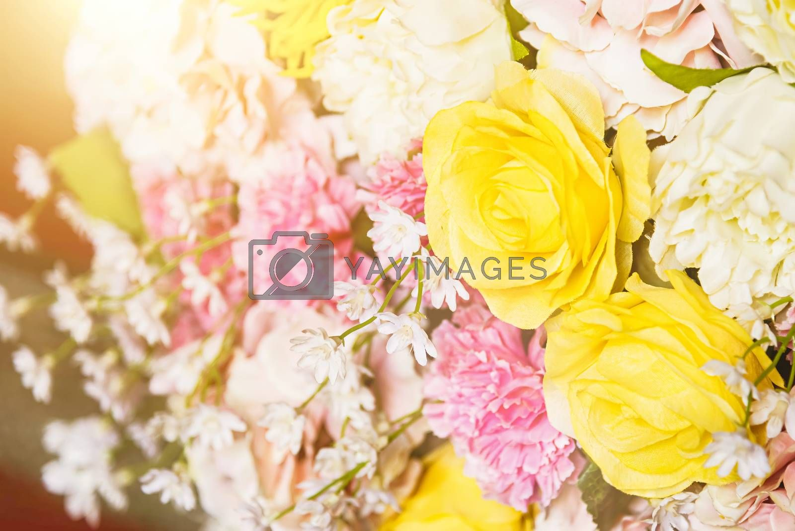 Petals flower rose white and pink bouquet retro postcard mood spring and summer background