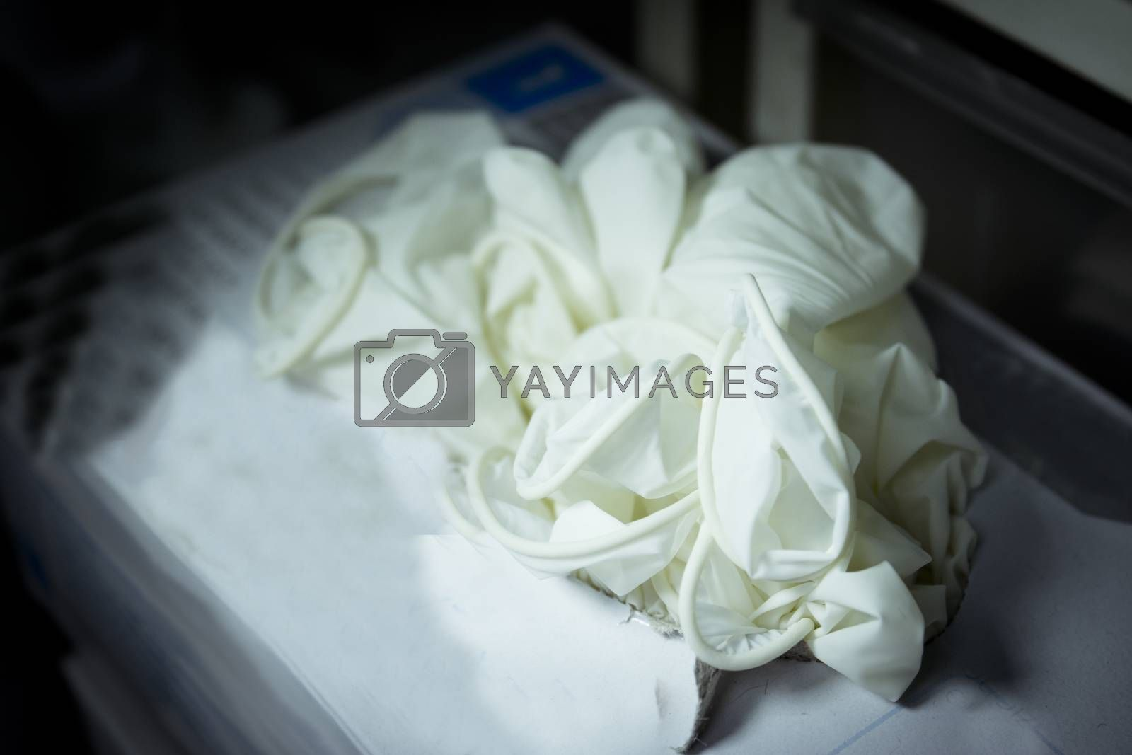 White latex gloves for hospital use. No people