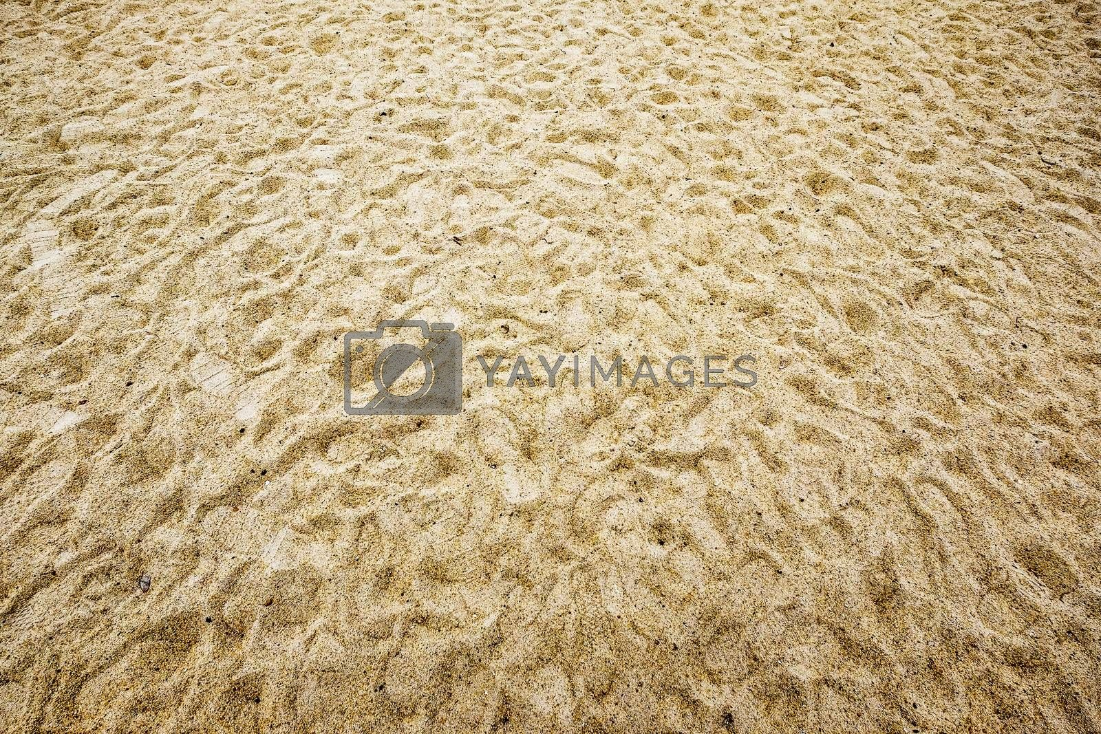 Sand background and textures