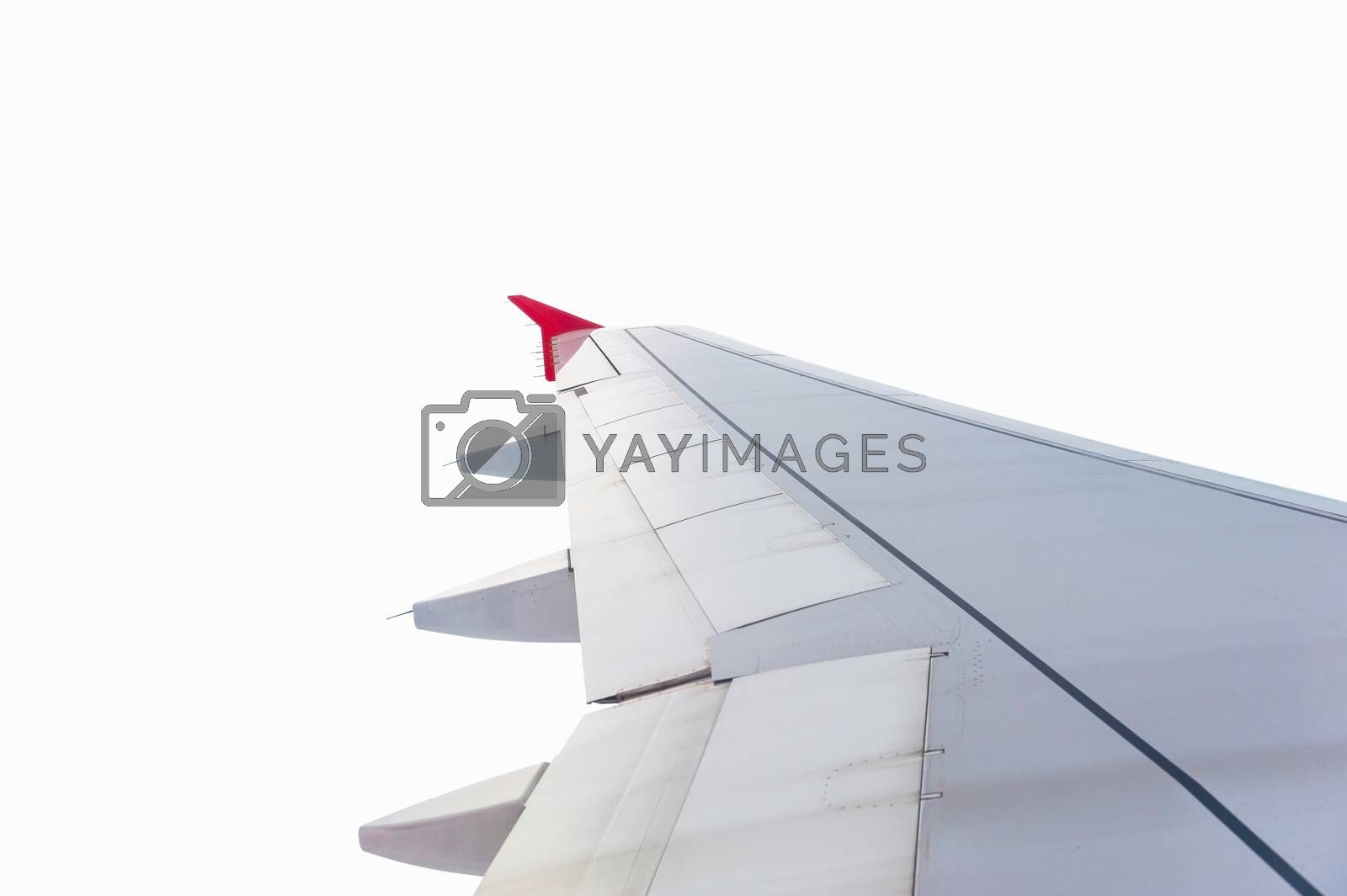 Wing plane isolated on white background with clipping path