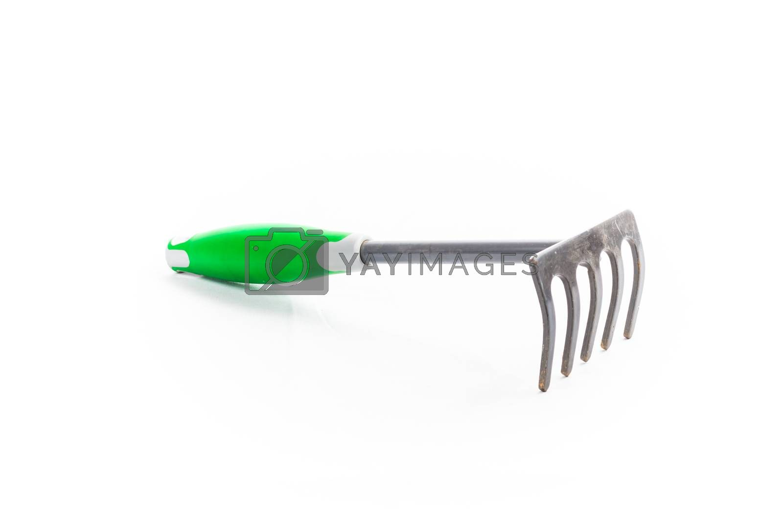 small rake gardening 5 teeth with green handle on white background