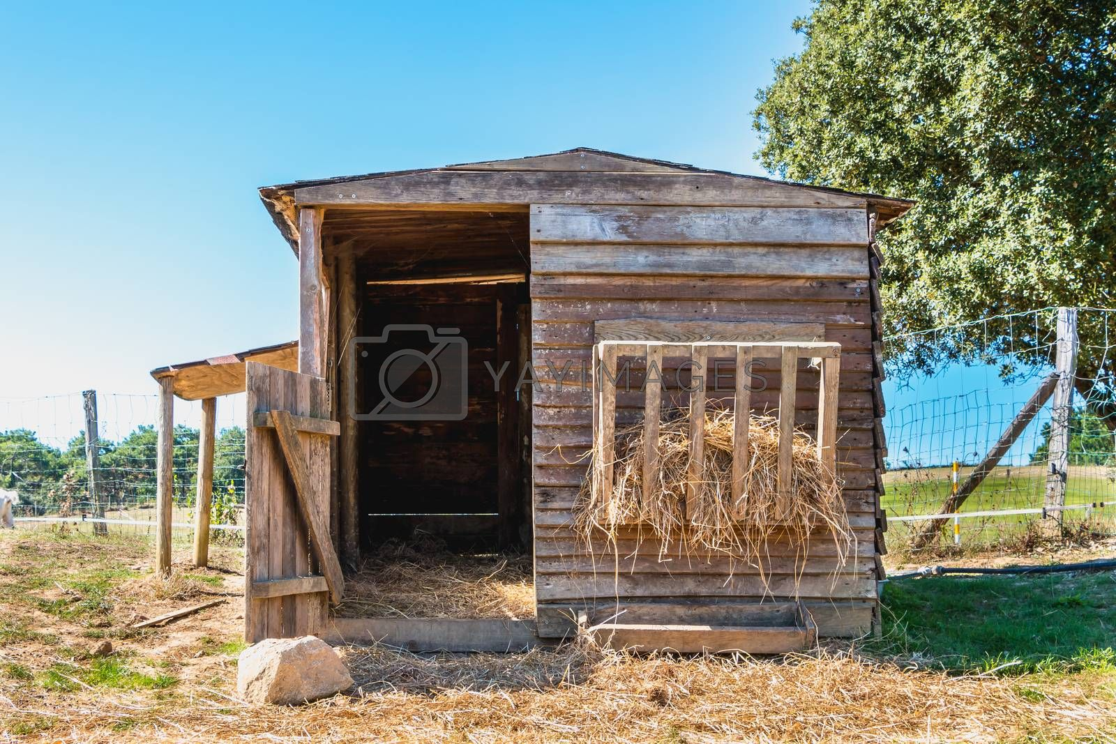 small wooden shack used for animals in a meadow