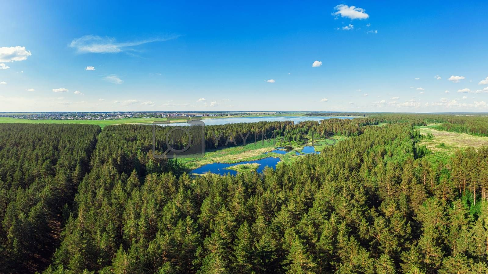 Aerial view of forest lake by rusak