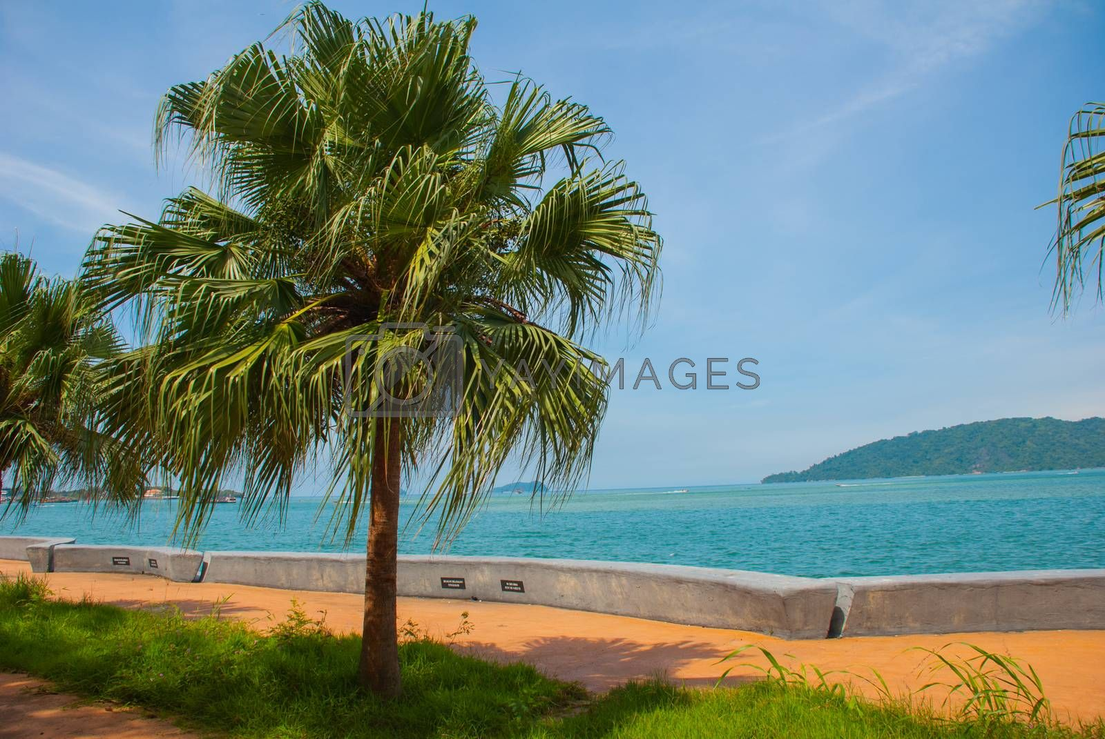 KOTA KINABALU, SABAH, MALAYSIA - MARCH 2017: The Central promenade with palm trees by the sea.