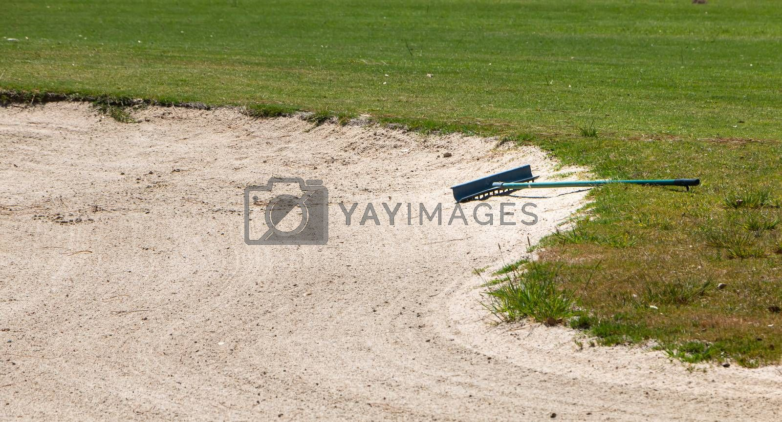 view of sand rake lying in a bunker on a golf course