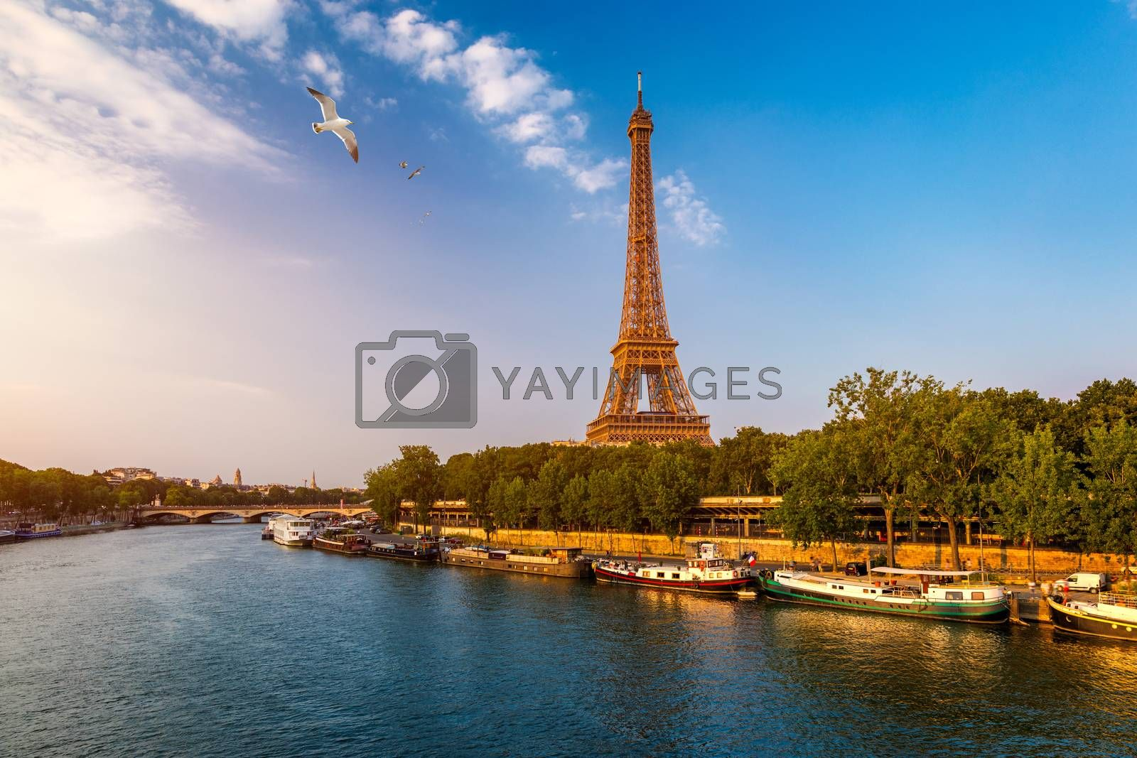 Paris Eiffel Tower and river Seine at sunset in Paris, France. Eiffel Tower is one of the most iconic landmarks of Paris. Eiffel tower in summer, Paris, France. The Eiffel Tower in Paris, France.