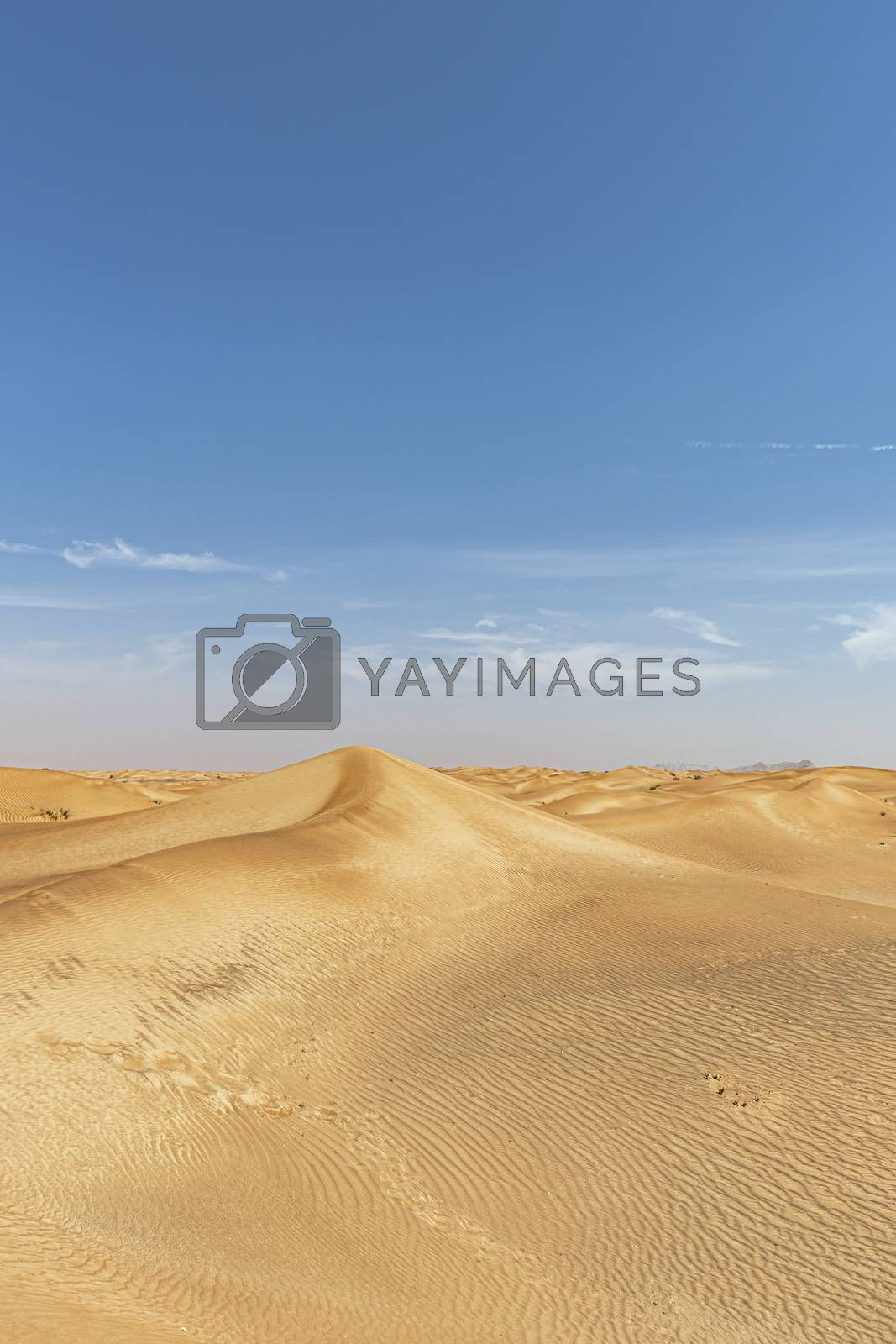 Desert landscape and with large copy space in the blue sky, for presentation