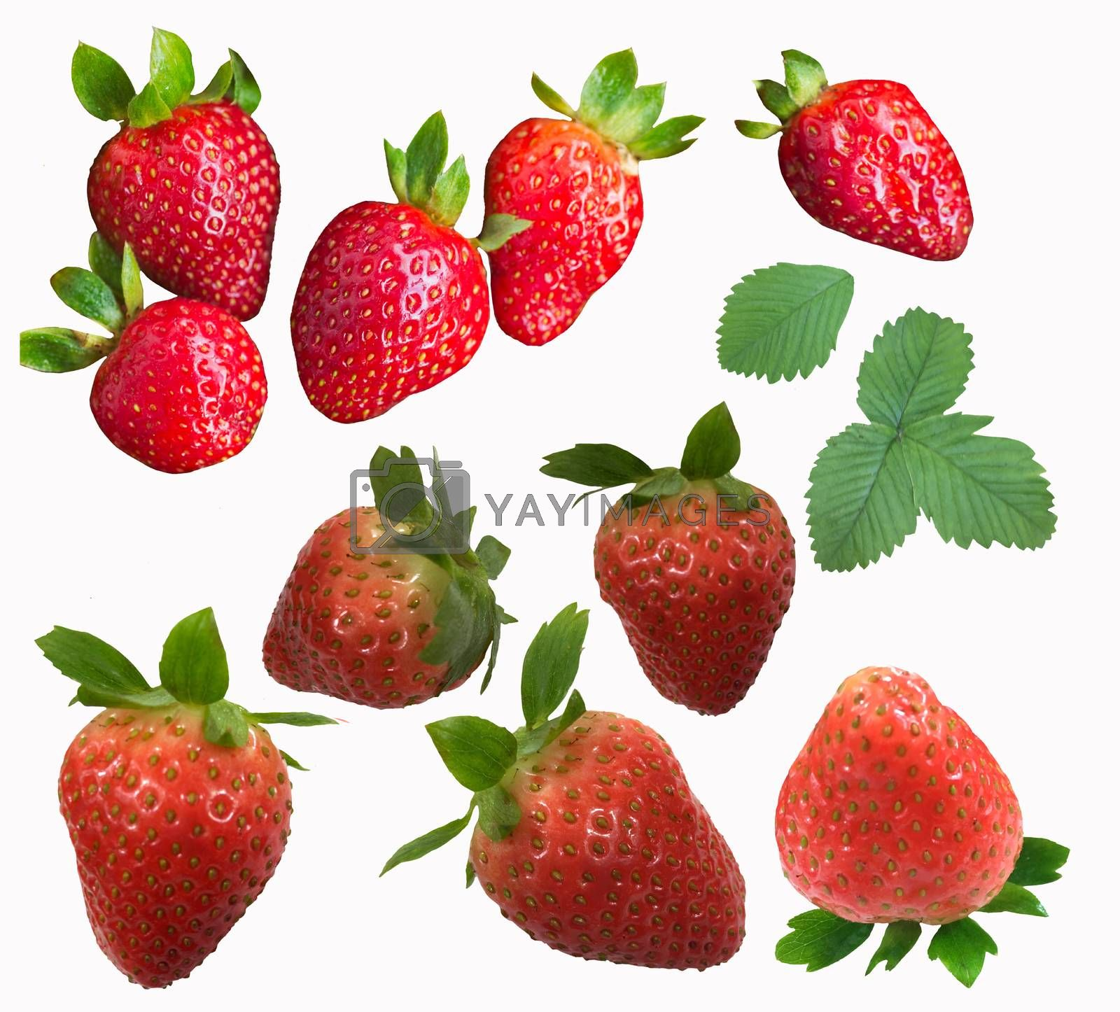 Set of ripe strawberries isolated on white background.