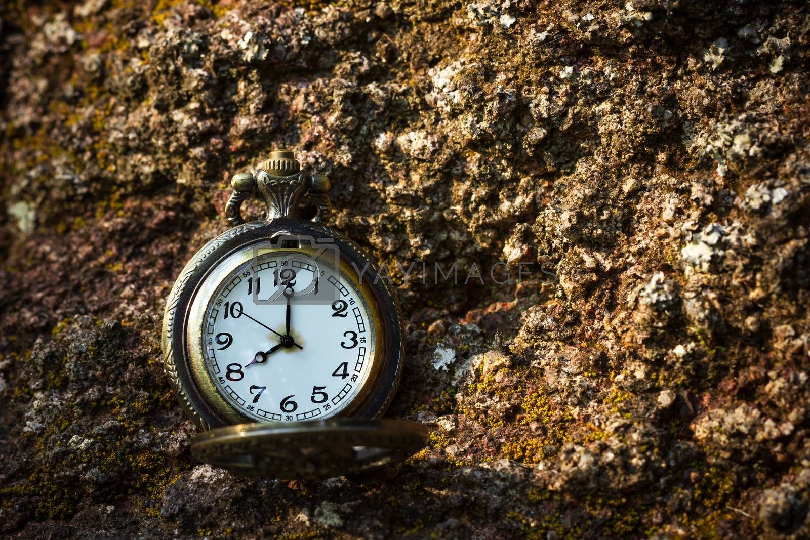 Vintage old pocket watch placed on the rock in forest and morning sunlight. At 8 o'clock. Closeup and copy space.