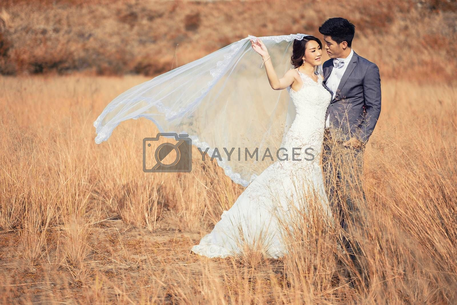 Happy romantic young couple in Meadow