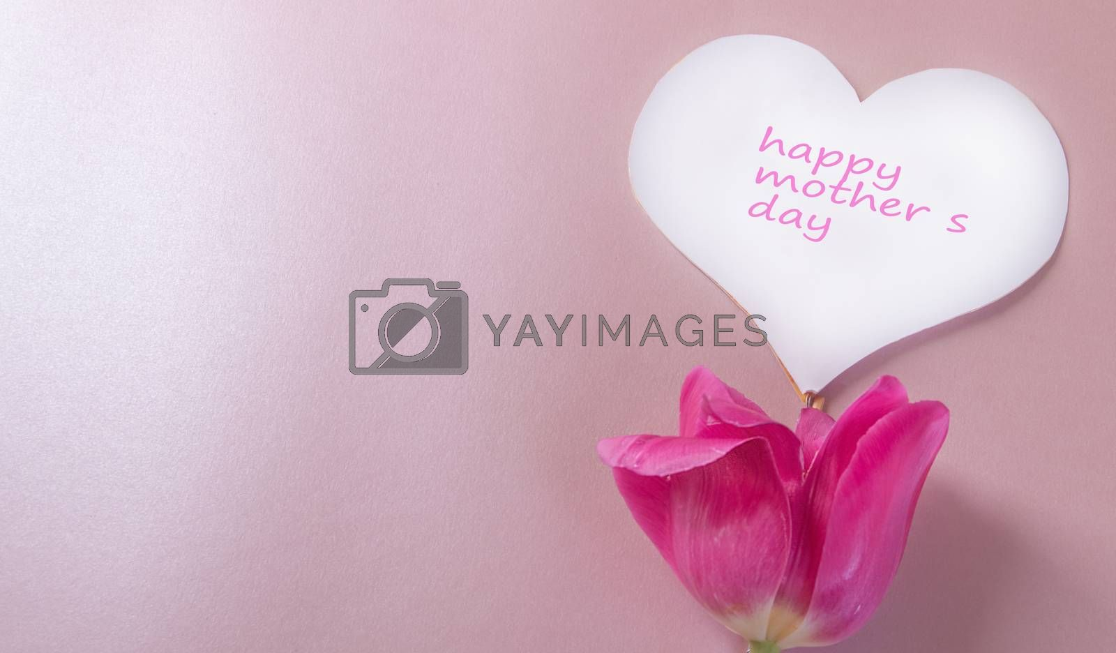 Mother's day greeting card, white paper heart and one pink Tulip on a soft pink background. Social charity event by Claire Lucia