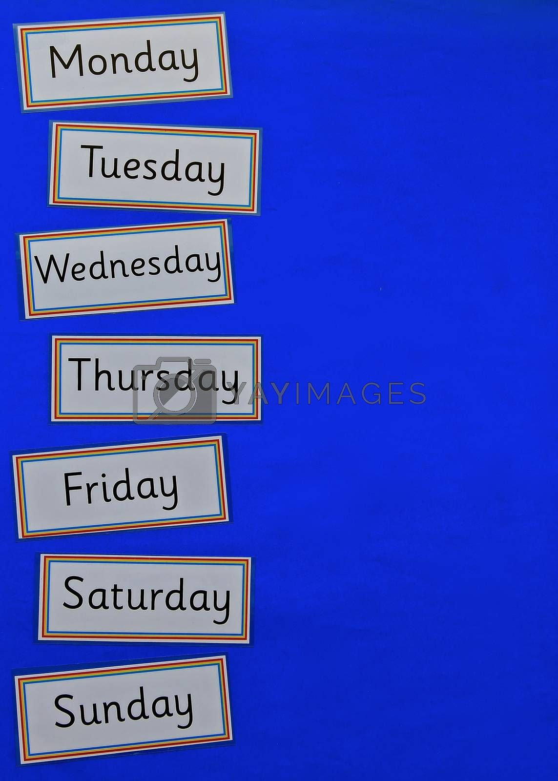 Education concept flatlay with copyspace on a blue background, with the days of the week.