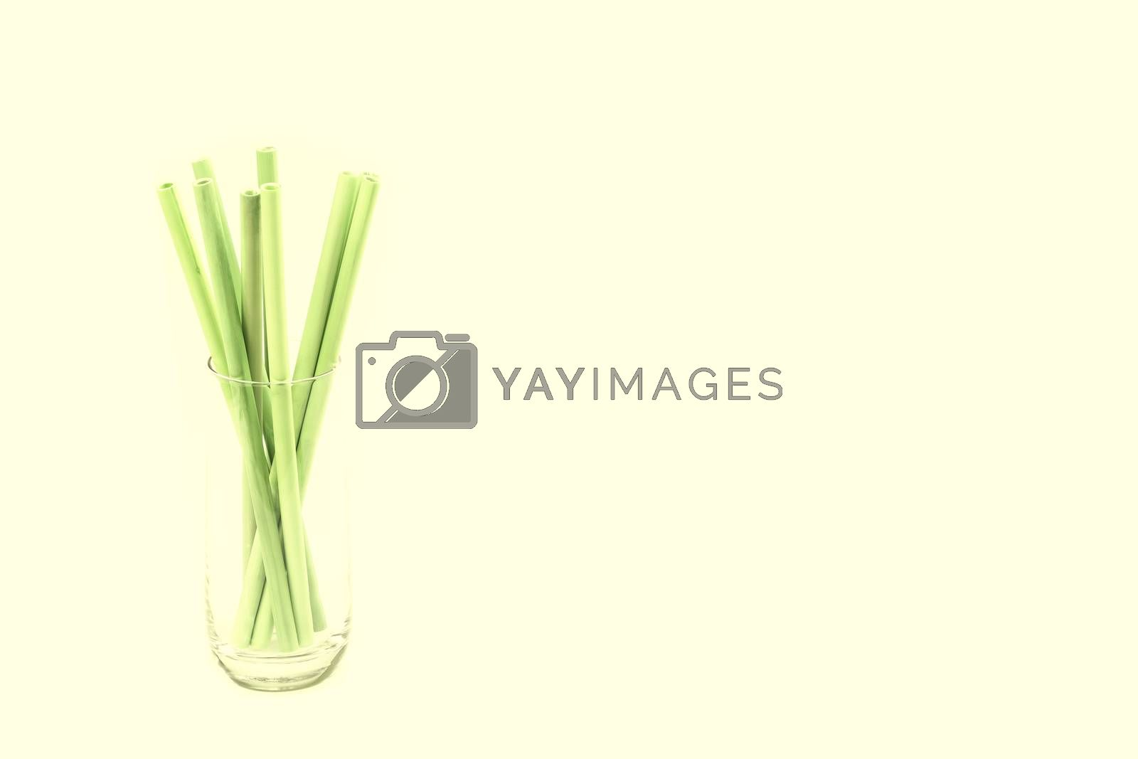 Eco-friendly Bamboo drinking straws against light green background and large copy space (no to plastic concept)