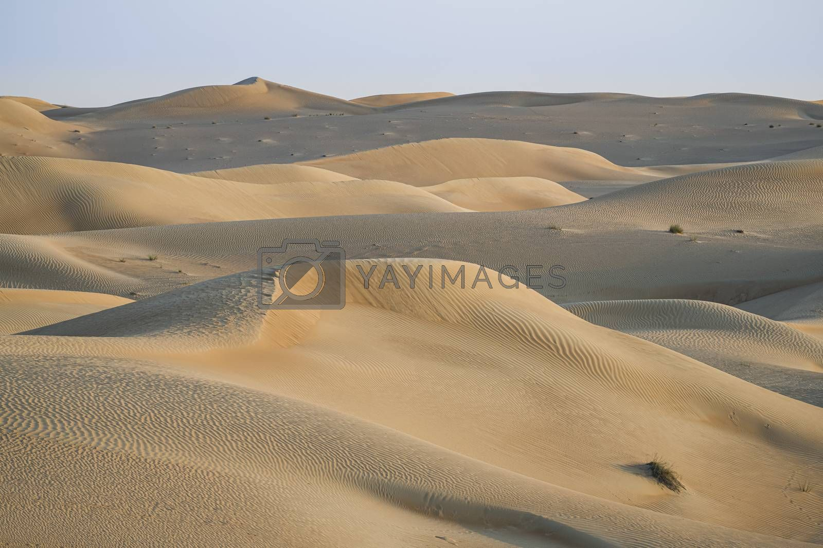 Desert lansdcape with yellow, red sand dunes