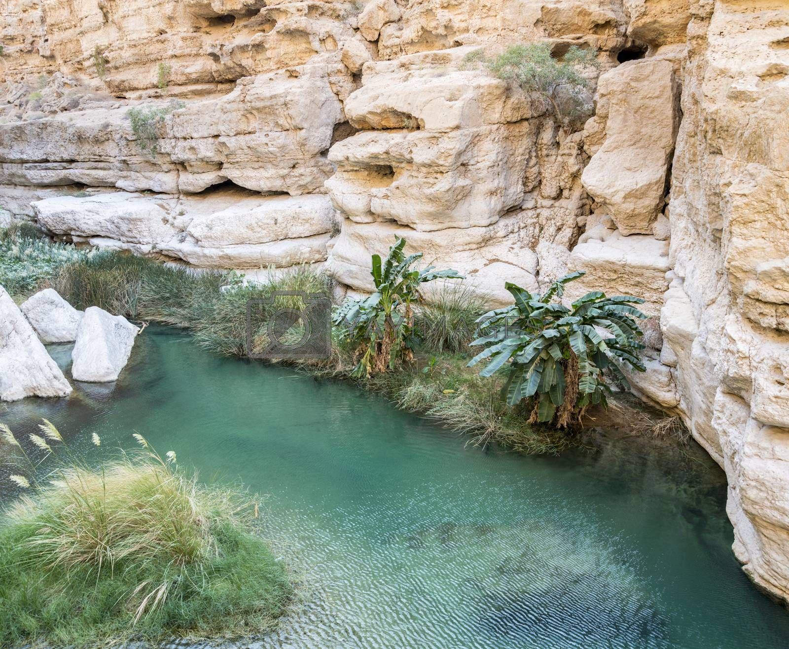 One natural pool in the canyon of the famous and touristic Wadi Shab, Tiwi, Sultanate of Oman, Middle East