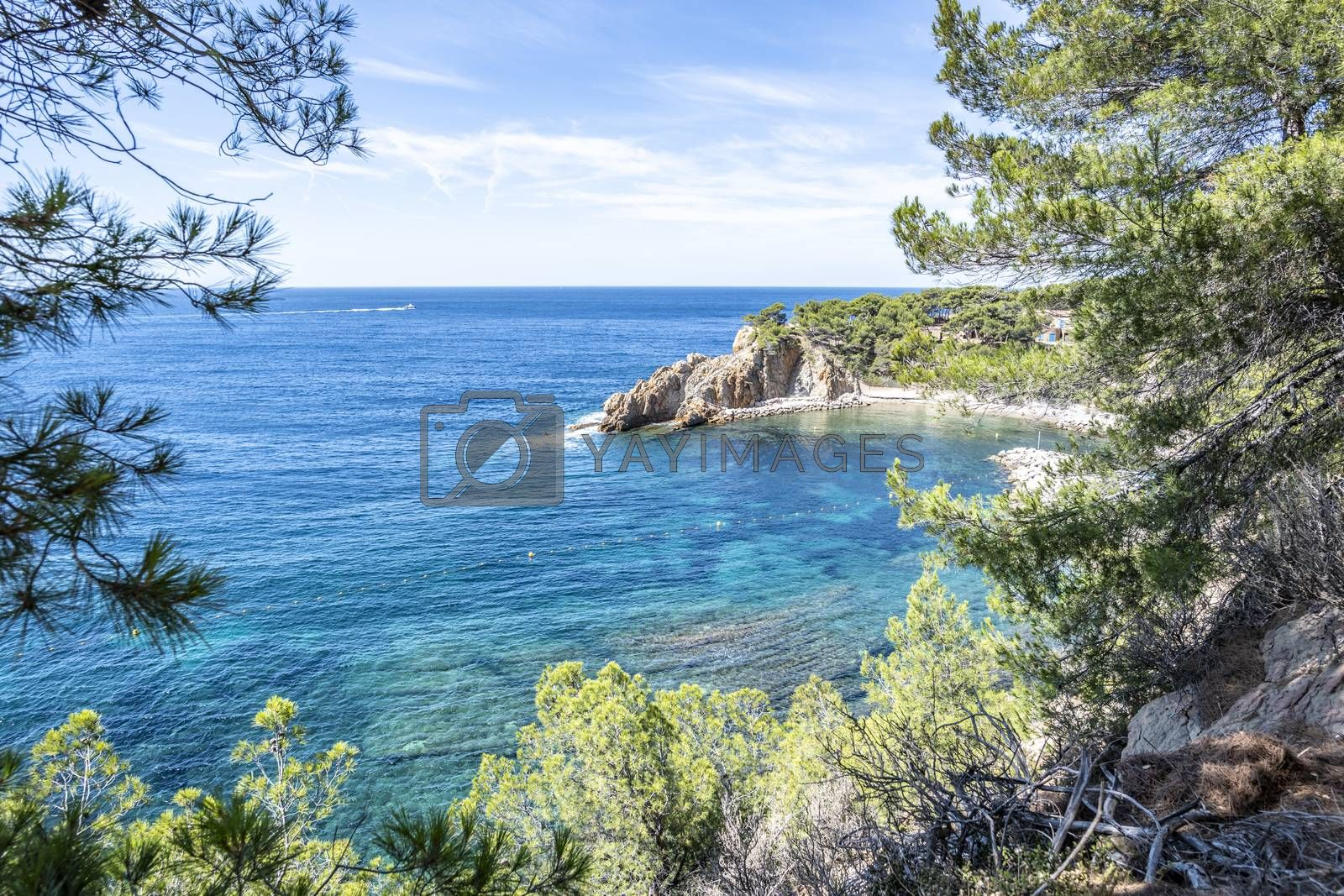 """Scenic view of  """"Calanque of Figuieres"""" (creek of Figuieres and Figuières Cove in Méjean), South of France, Europe"""