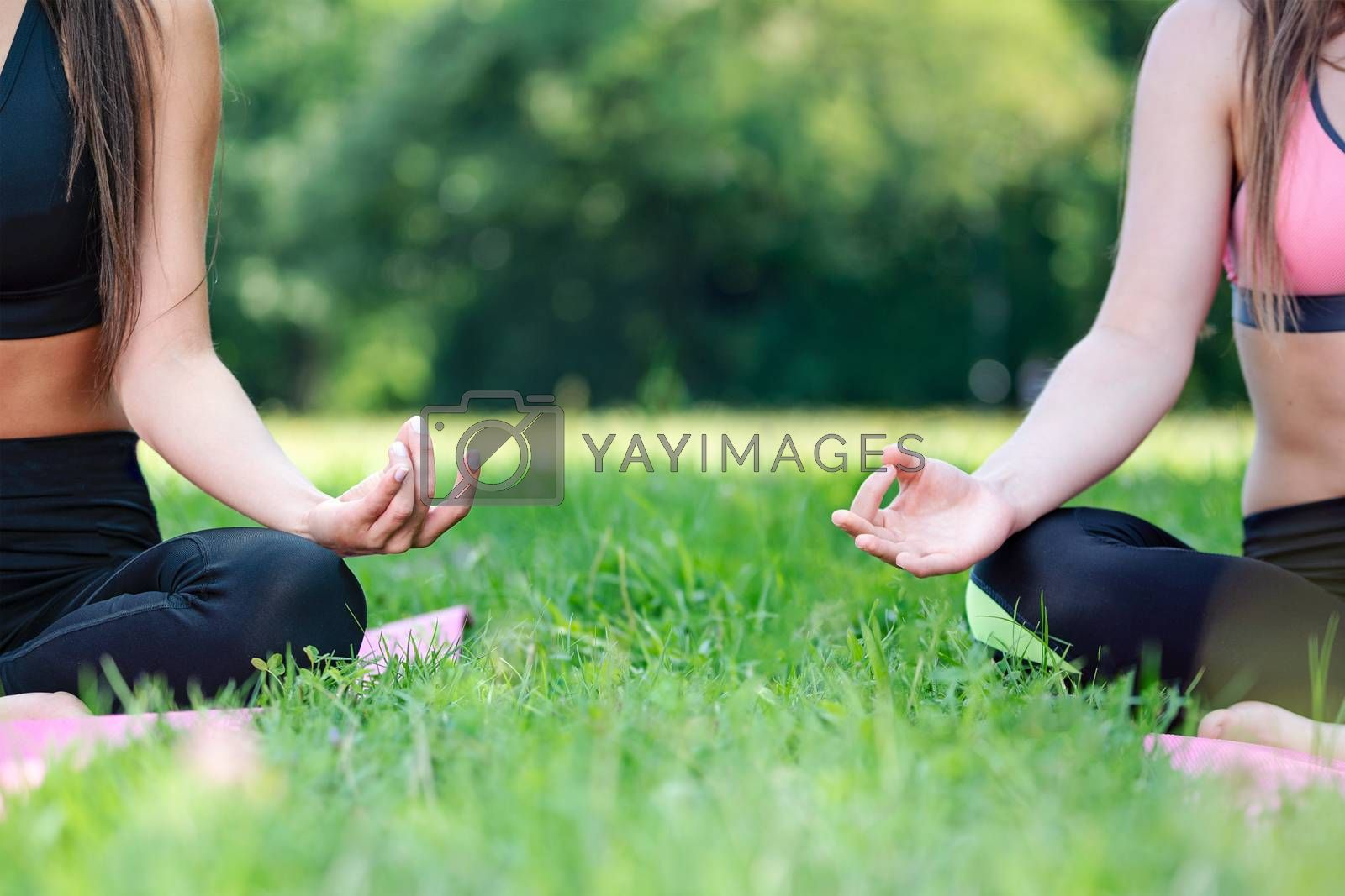 Two women doing yoga meditation in a lotus pose outdoors in a park on a sunny day in close-up (copy space)